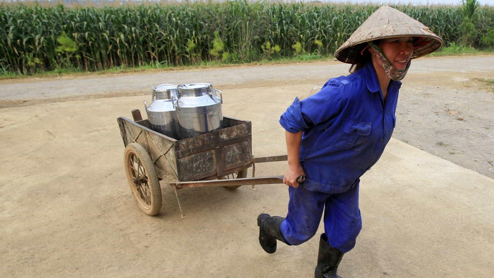 China propõe a desempregados em cidades que se mudem para zonas rurais