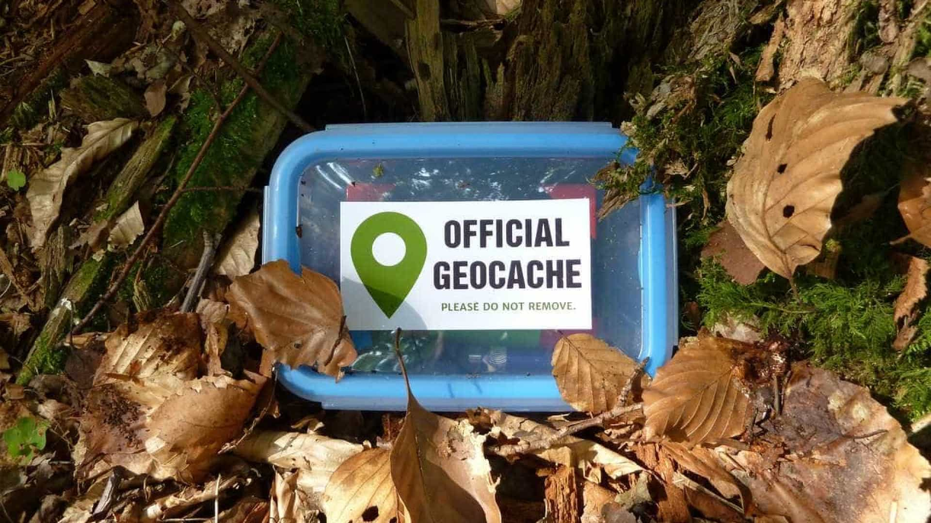 Geocaching: o desafio que está a unir centenas de portugueses