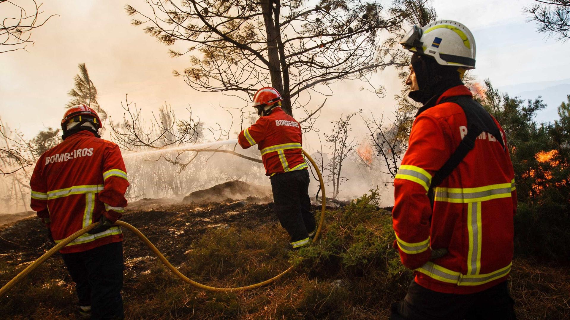 Fumo de incêndio condiciona circulação na A1 em Gaia