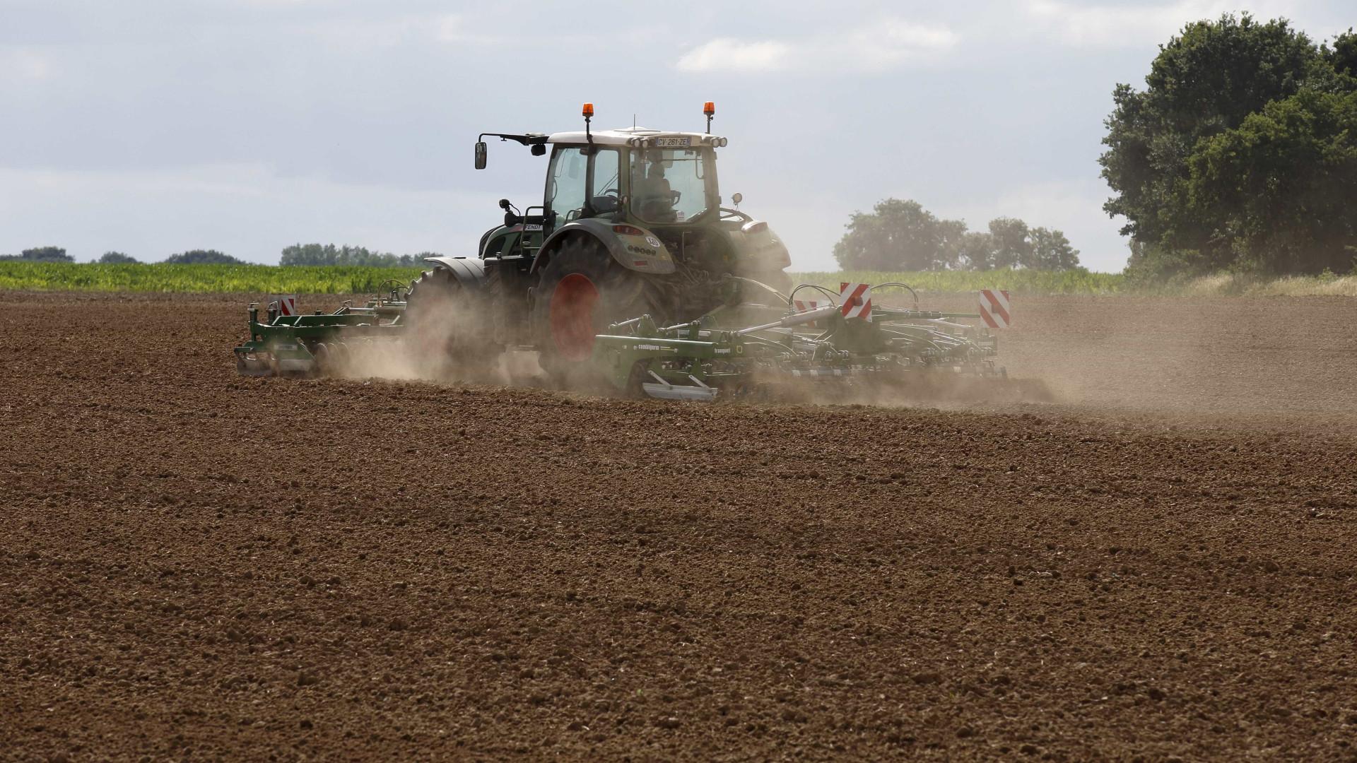 Governo aumenta valor do prémio de instalação para jovens agricultores