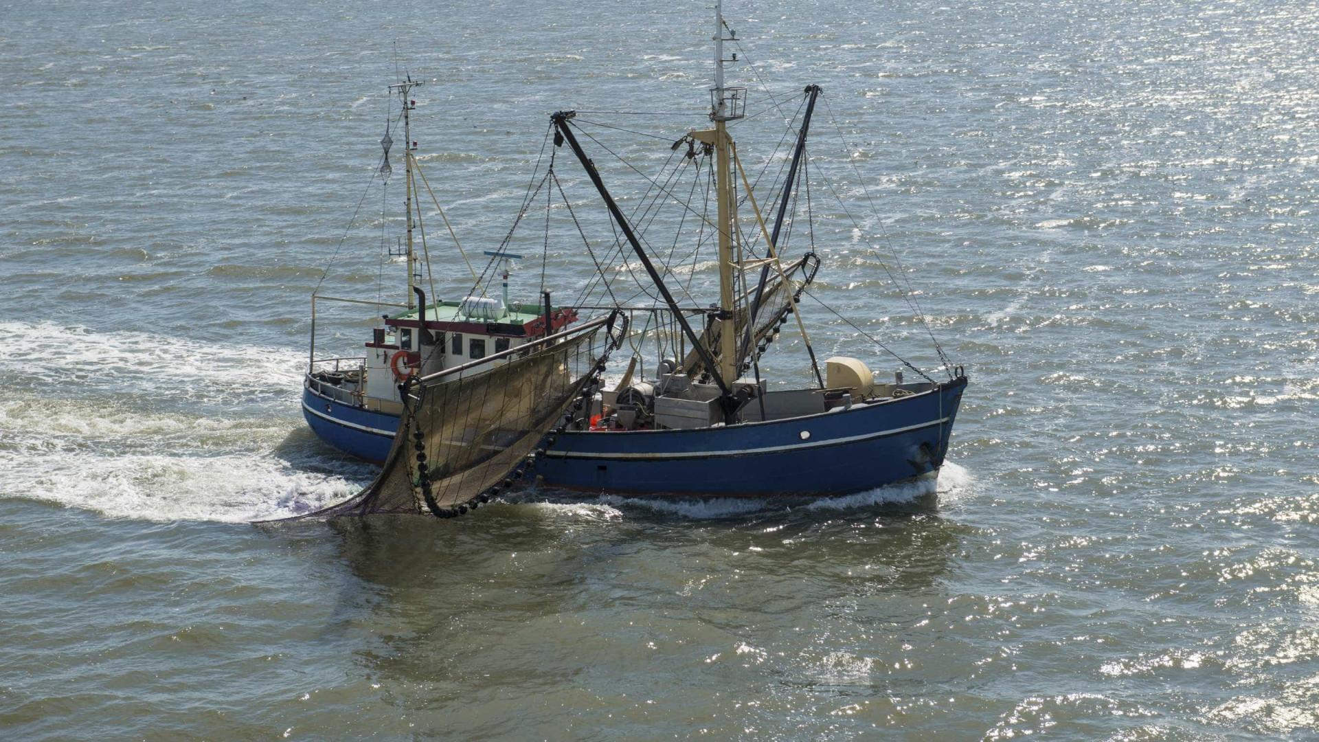 Profissionais da pesca nos Açores abrangidos por contrato coletivo