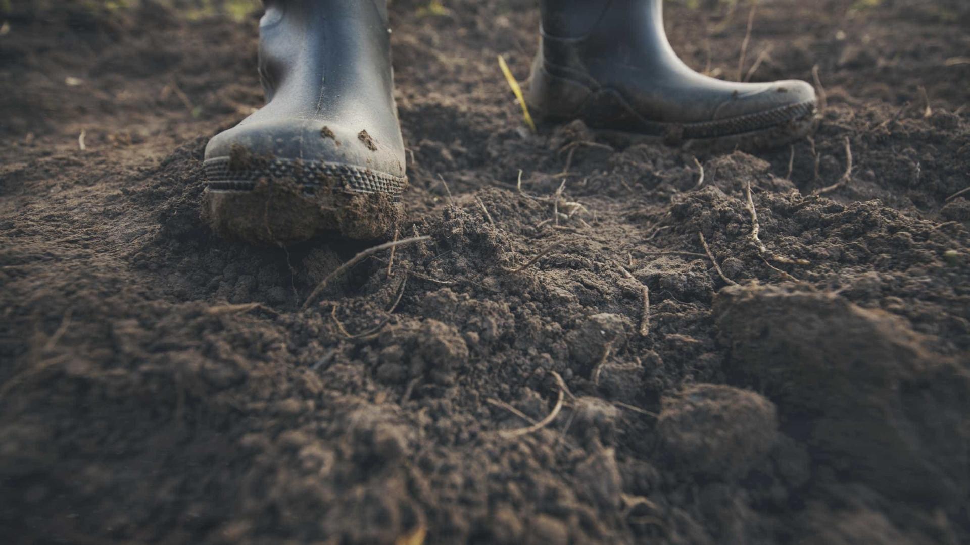 Agricultores alertam para problemas de água que podem resolver-se no Tejo