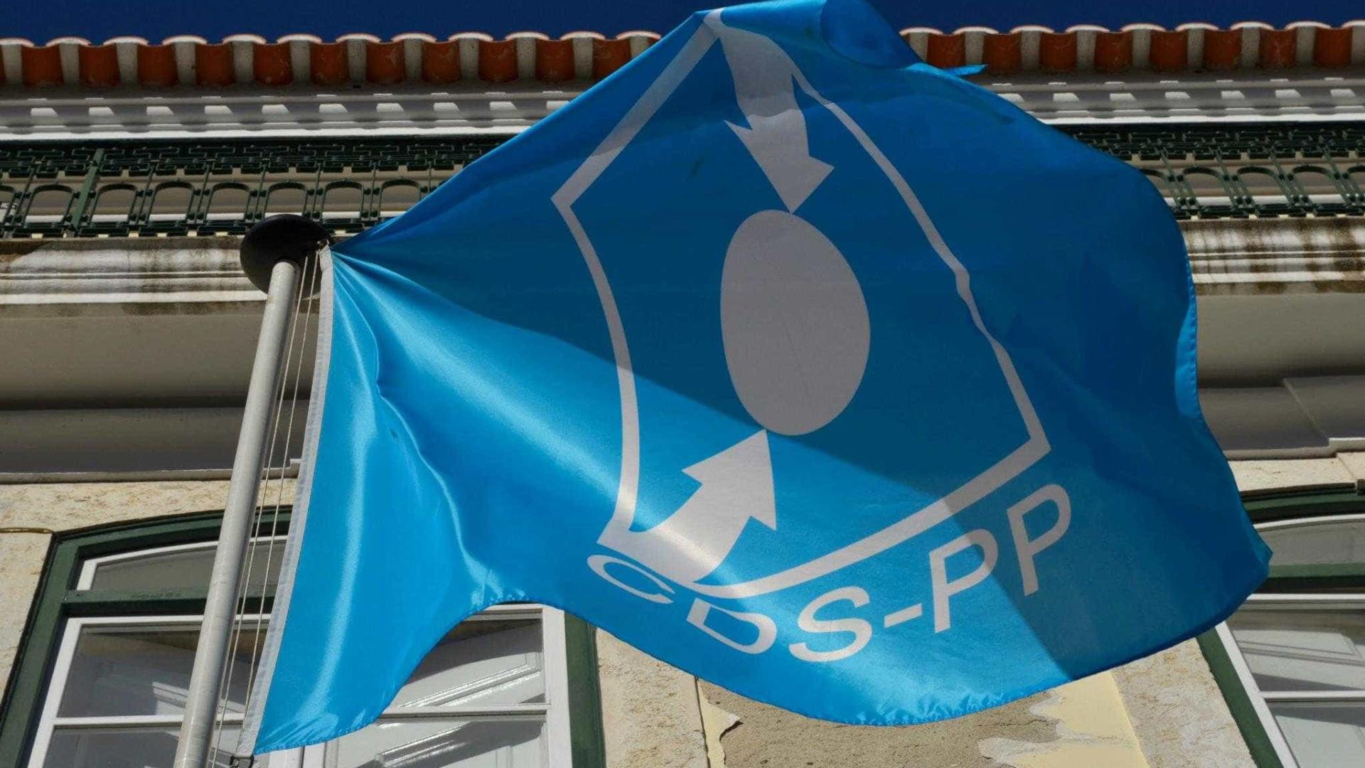 """Conselho Nacional do CDS está """"ferido de democraticidade"""""""
