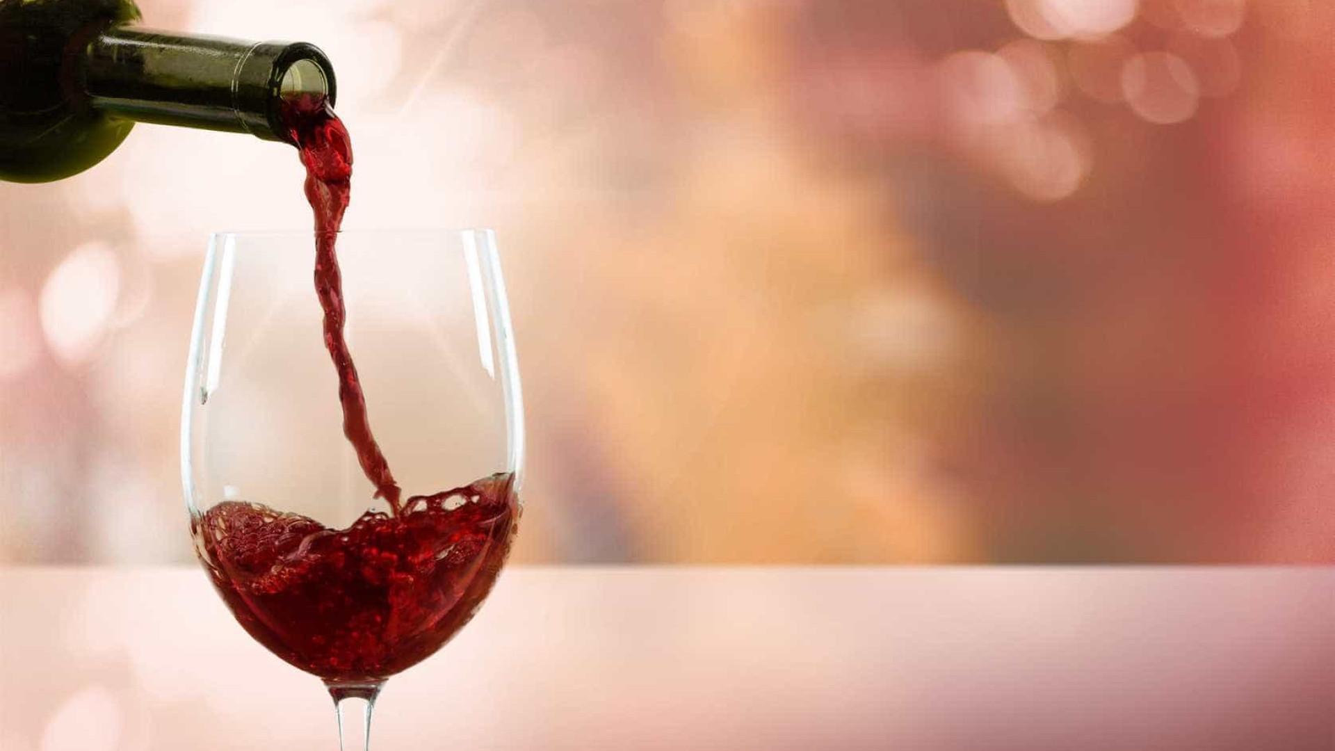"""Projeto de vinhos em Foz Côa em """"perfeito equilíbrio"""" ambiental"""