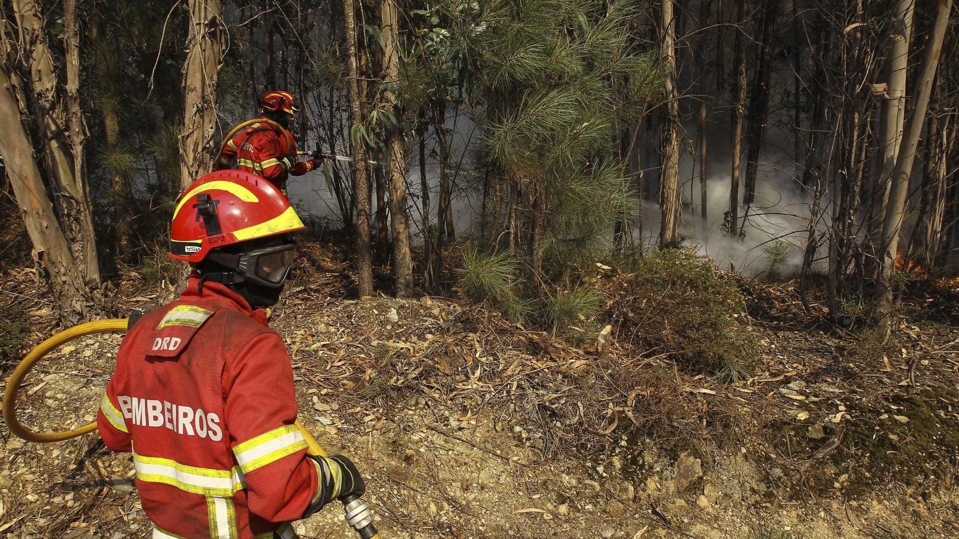 Vinte e nove concelhos de seis distritos com risco máximo de incêndio