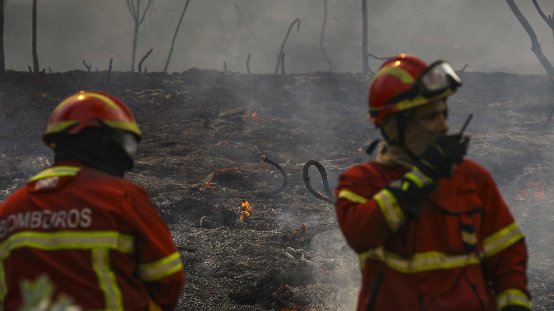 Fogo na Pampilhosa da Serra combatido por 200 bombeiros