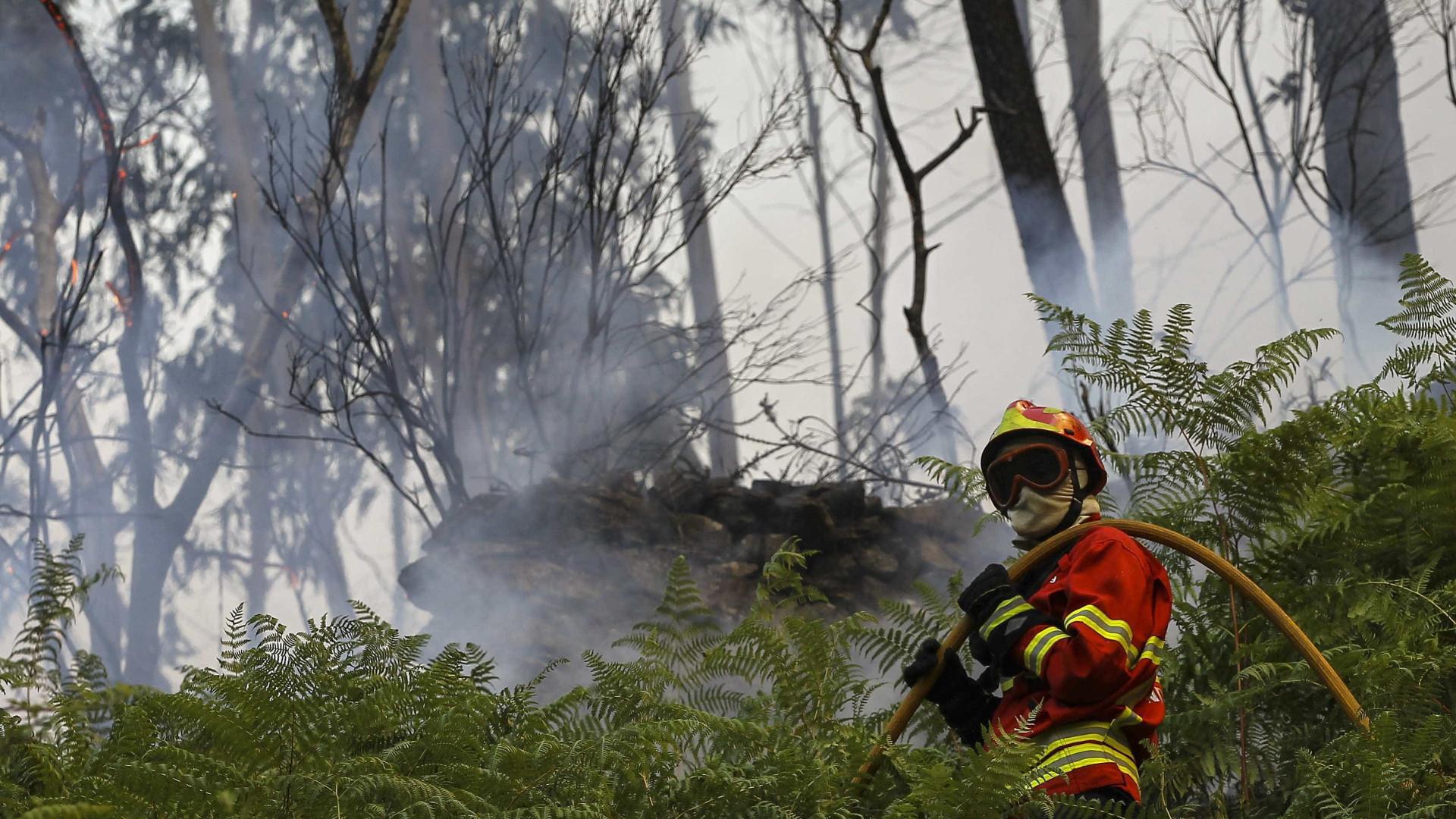 Dominado fogo no parque Peneda Gerês