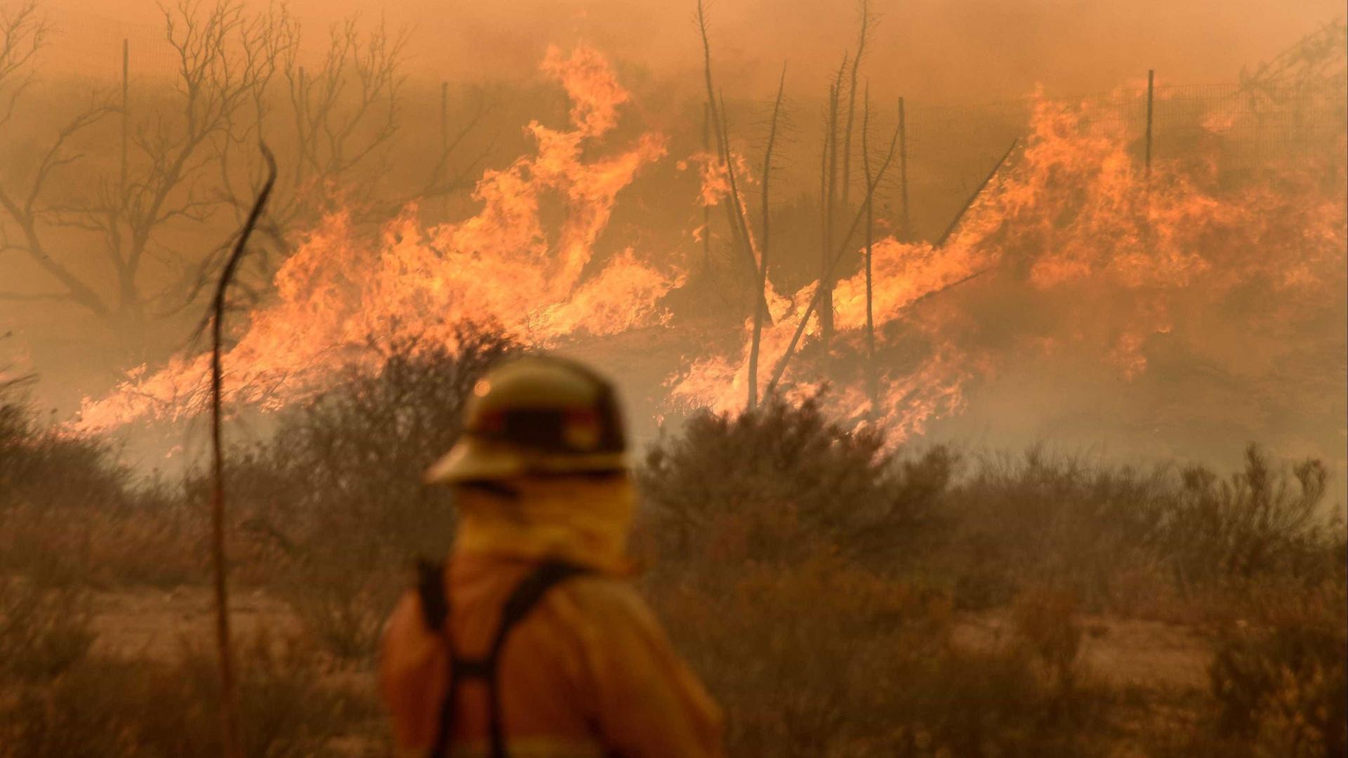 Cuidado: Os próximos dias trazem calor e um elevado risco de incêndio