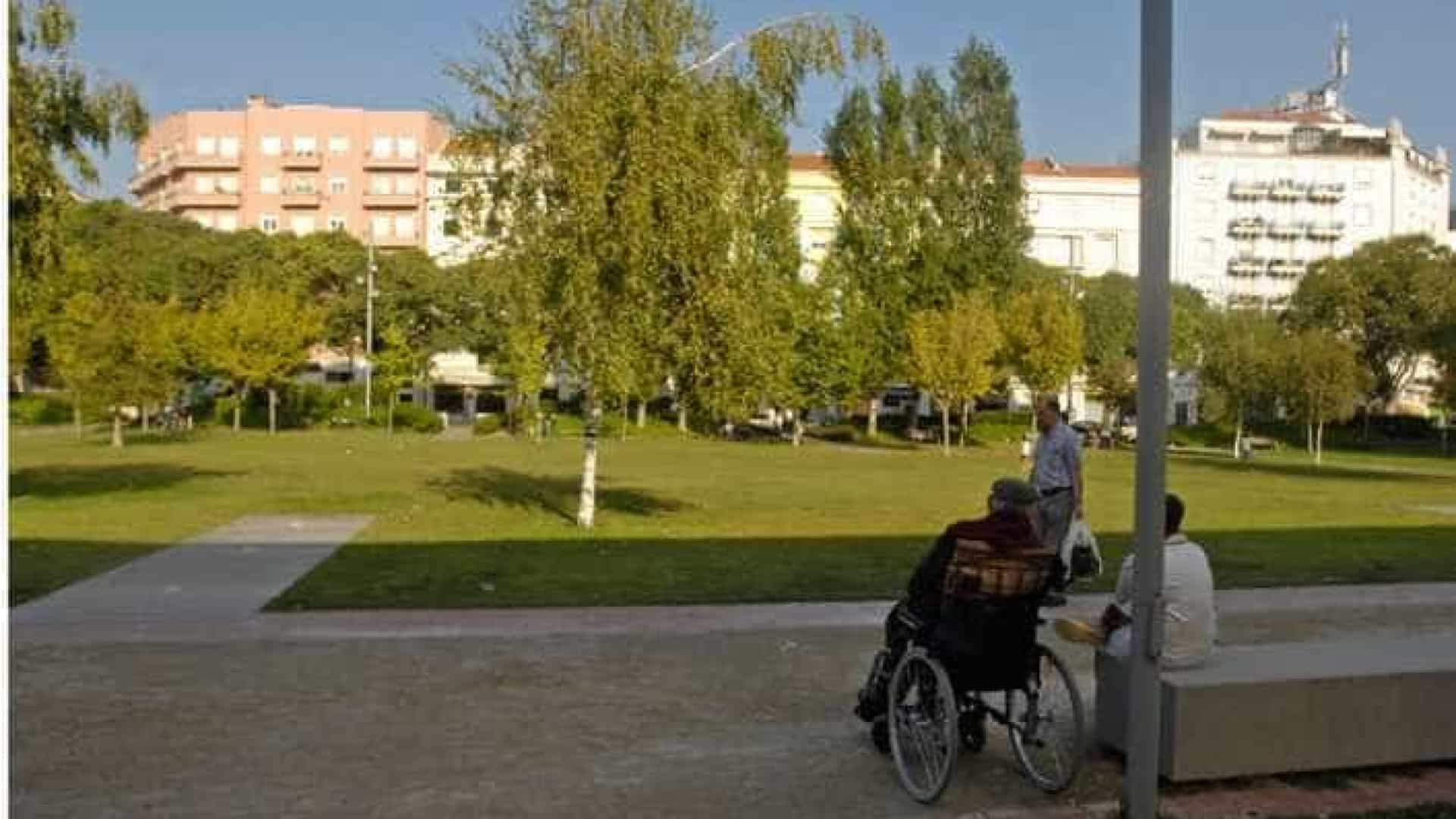 Universitários põem mãos à obra na limpeza do jardim do Arco do Cego