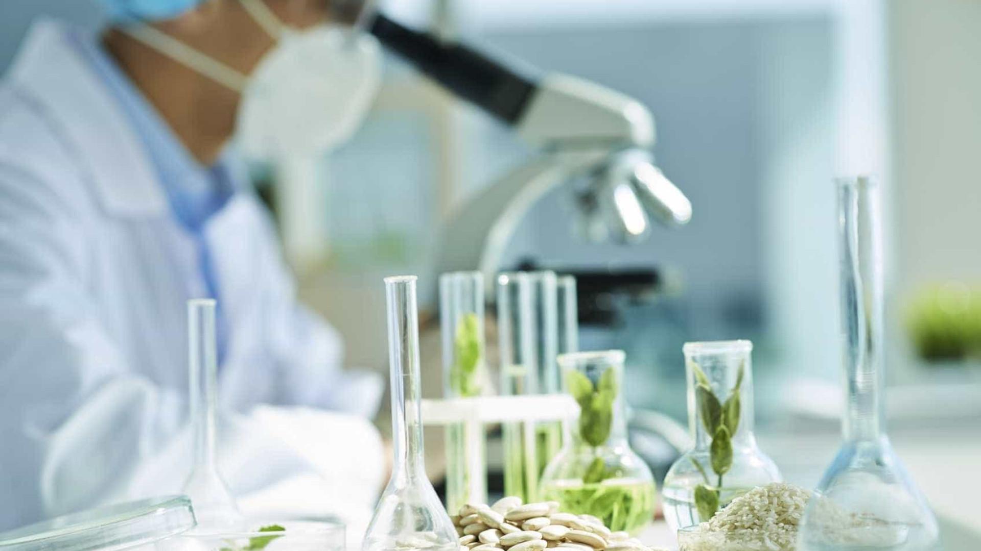 """Novos laboratórios vão gerar """"emprego"""" de Bragança ao Algarve"""