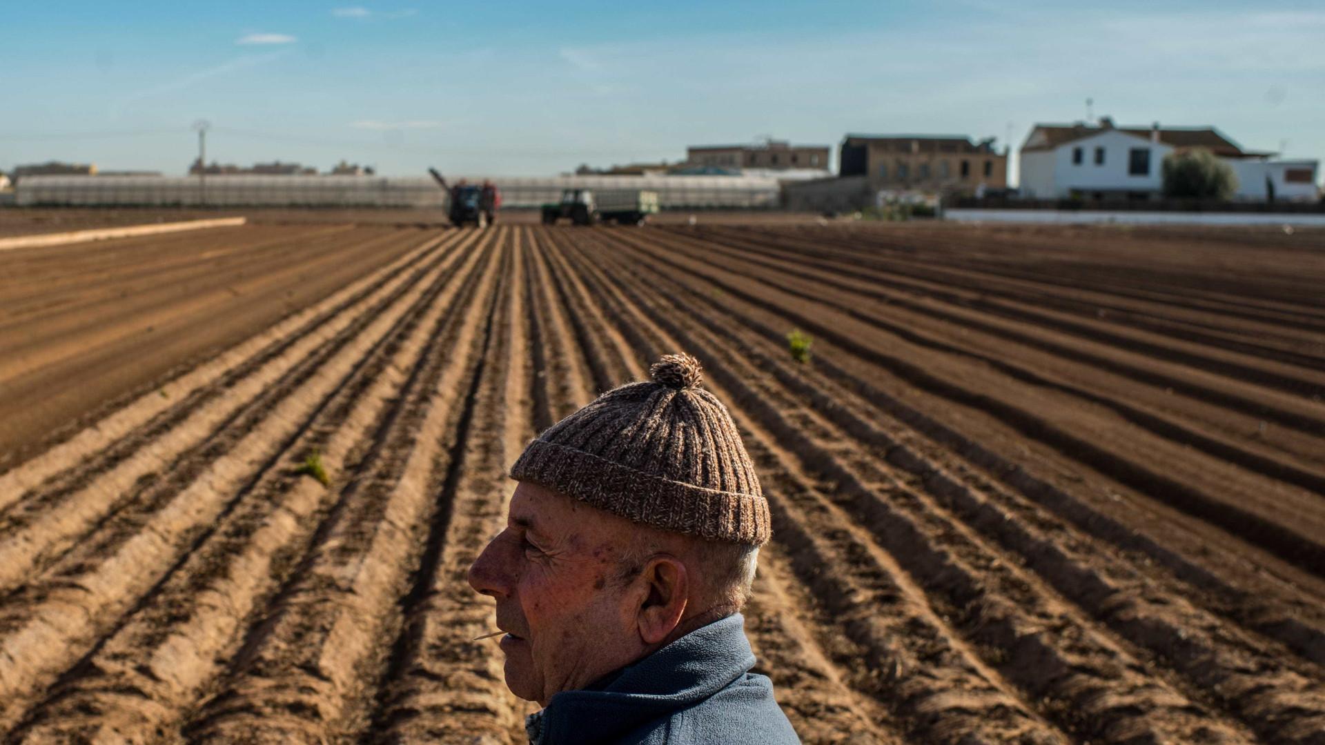 Agricultores e produtores florestais protestam em Lisboa na sexta-feira