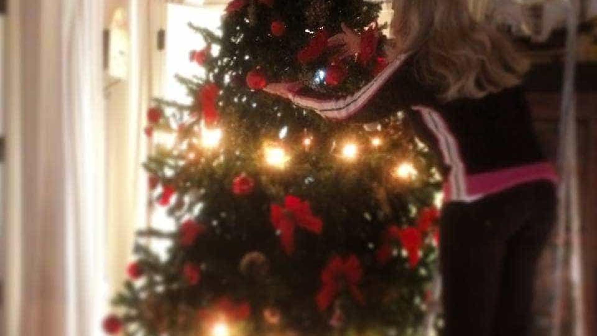 """""""O dia de montar e enfeitar a árvore de Natal chegou"""""""