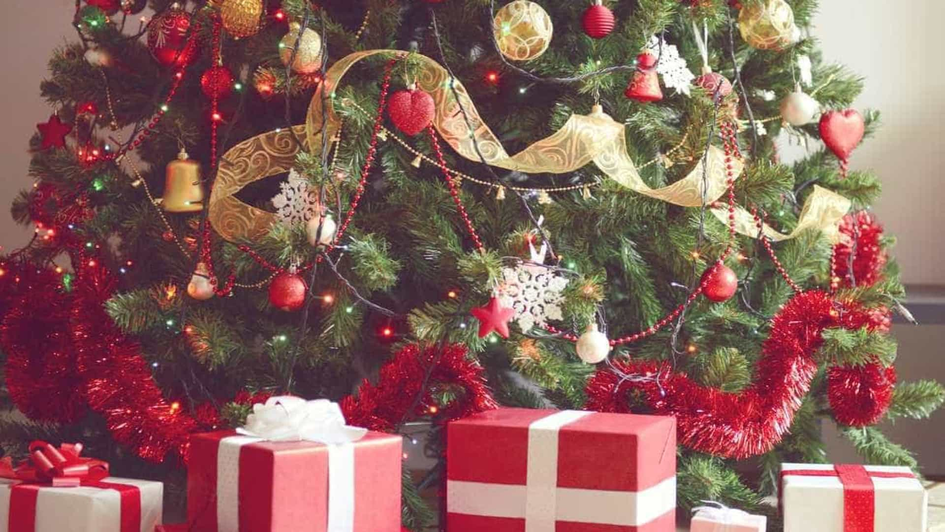 Hoje é dia de montar a árvore de Natal. Mas sabe o que significa?