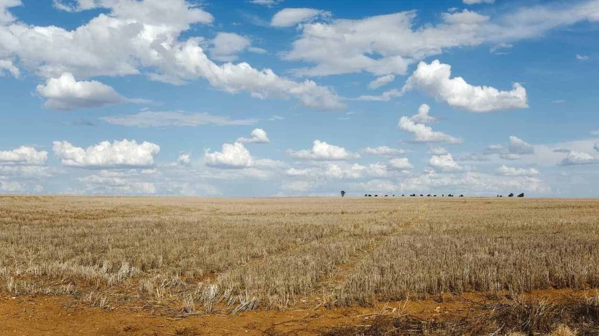 """País em seca severa e extrema com precipitação """"muito inferior ao normal"""""""
