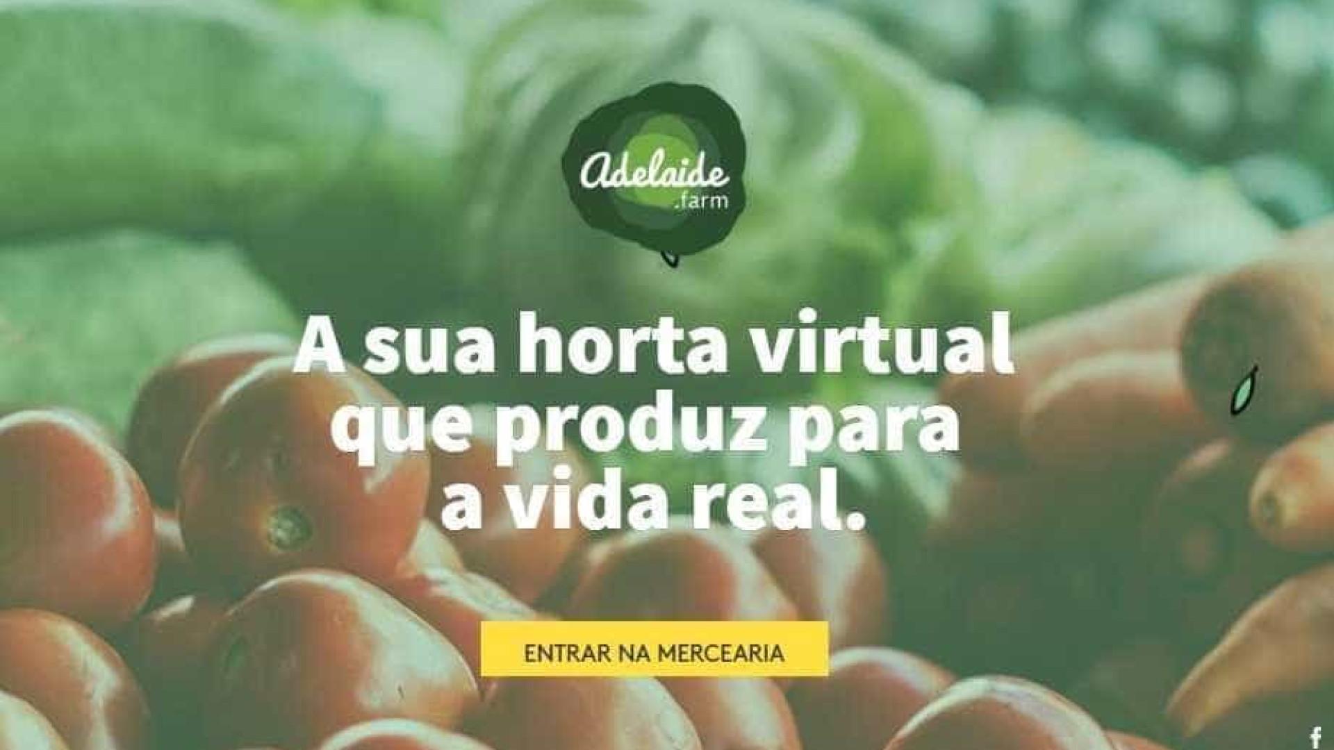 Nova plataforma virtual vai ligar agricultores e consumidores do país