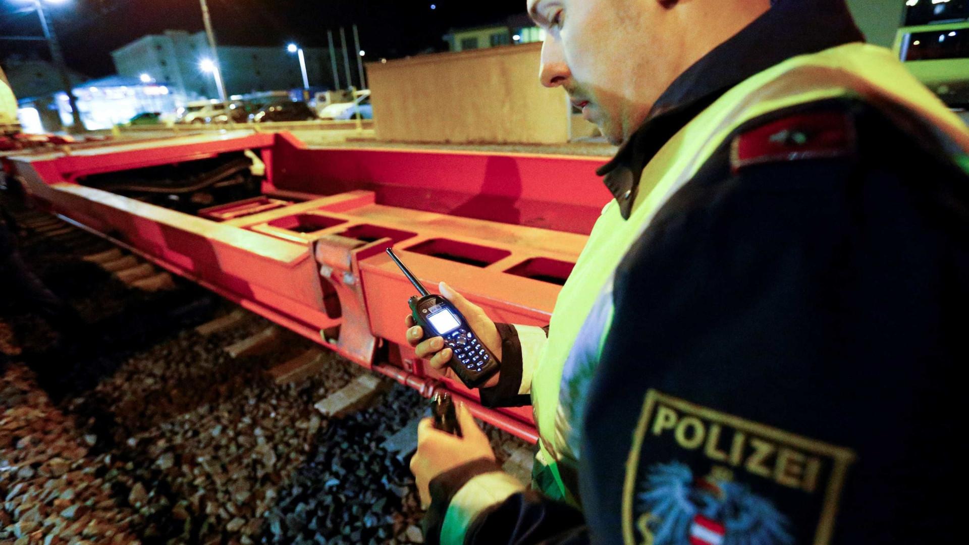 Homem armado com faca fere três pessoas em Viena