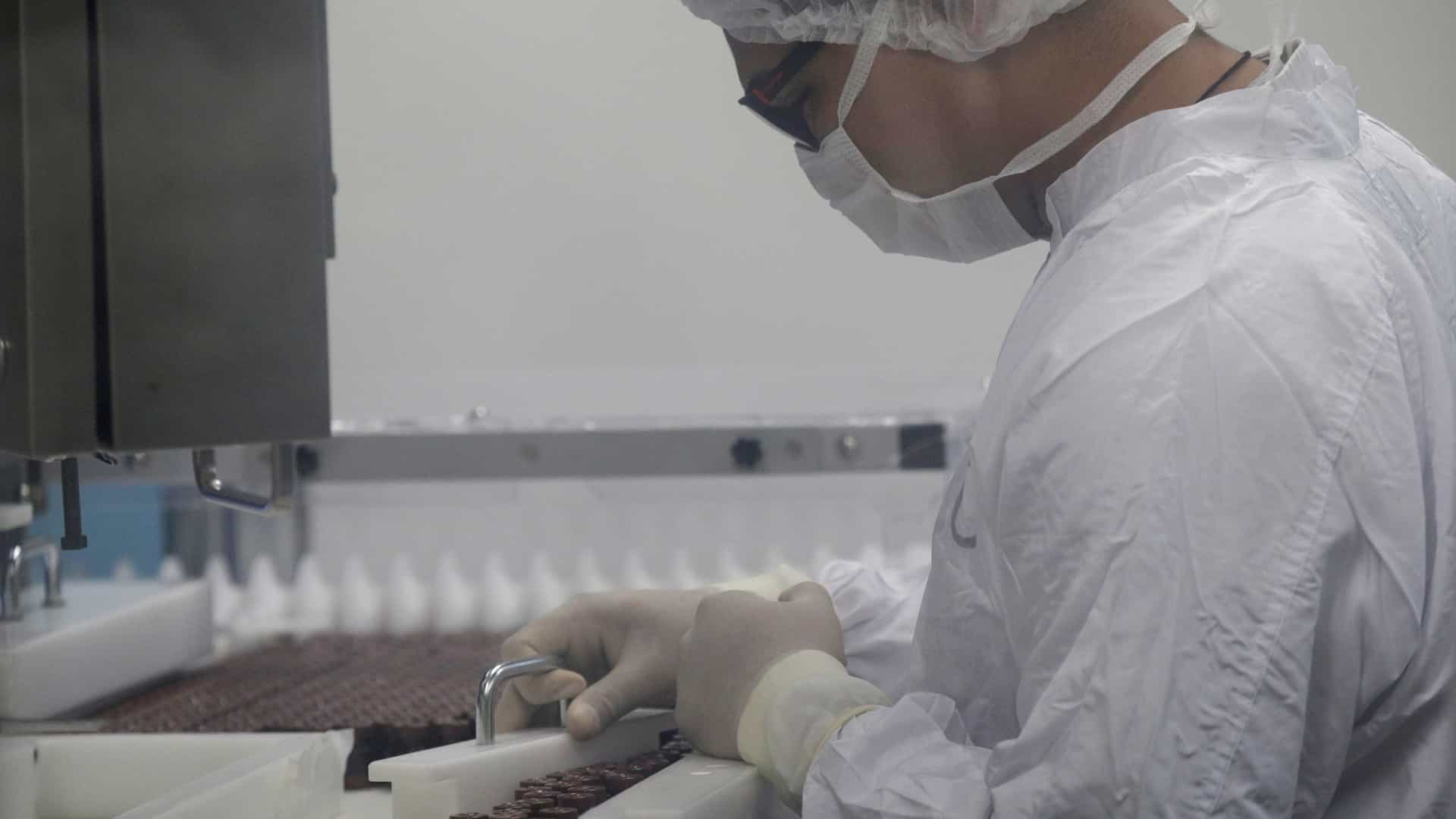 Visitantes a áreas de risco no Brasil devem tomar vacina da febre amarela