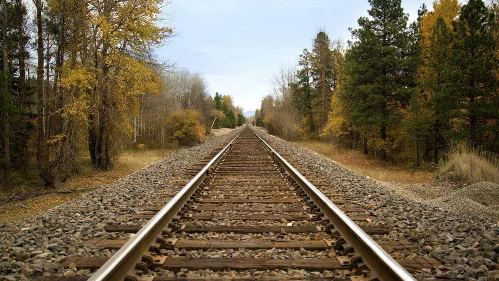 Infraestruturas de Portugal garante que rede ferroviária é segura