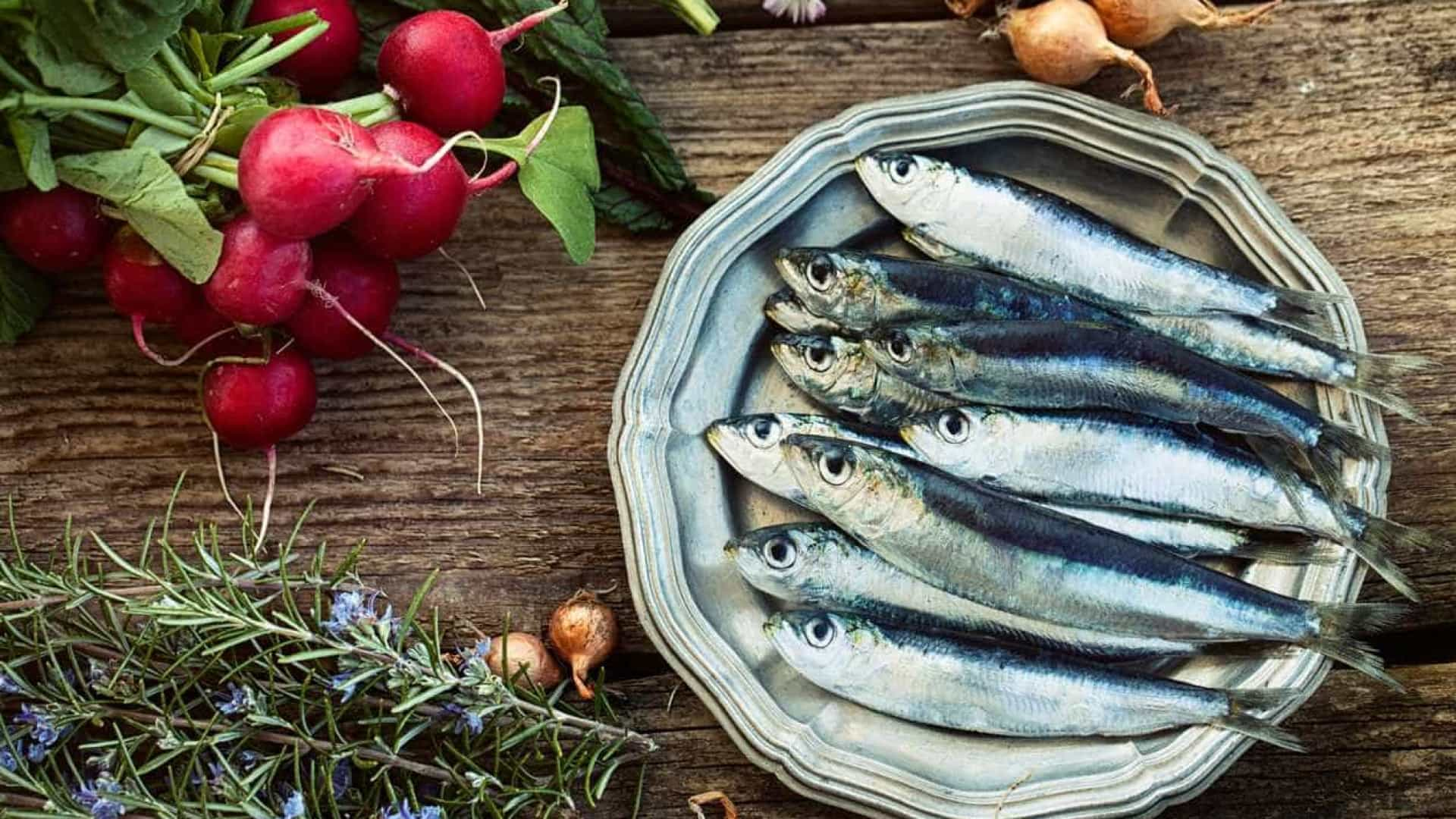 APTECE faz 'brilhar' o peixe português em Boston