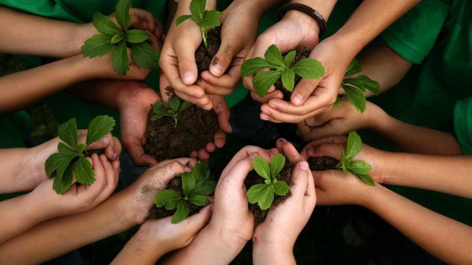 Impostos ligados a ambiente aumentaram 10% e atingem 4,8 mil milhões