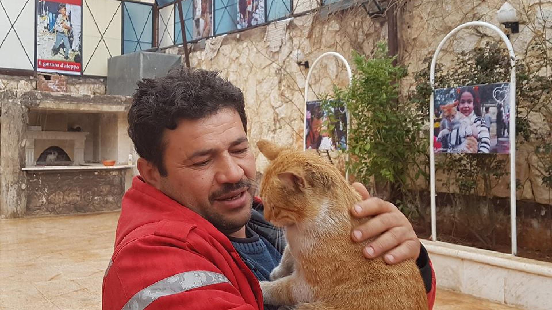 Abrigo para animais do 'homem dos gatos de Aleppo' foi destruído