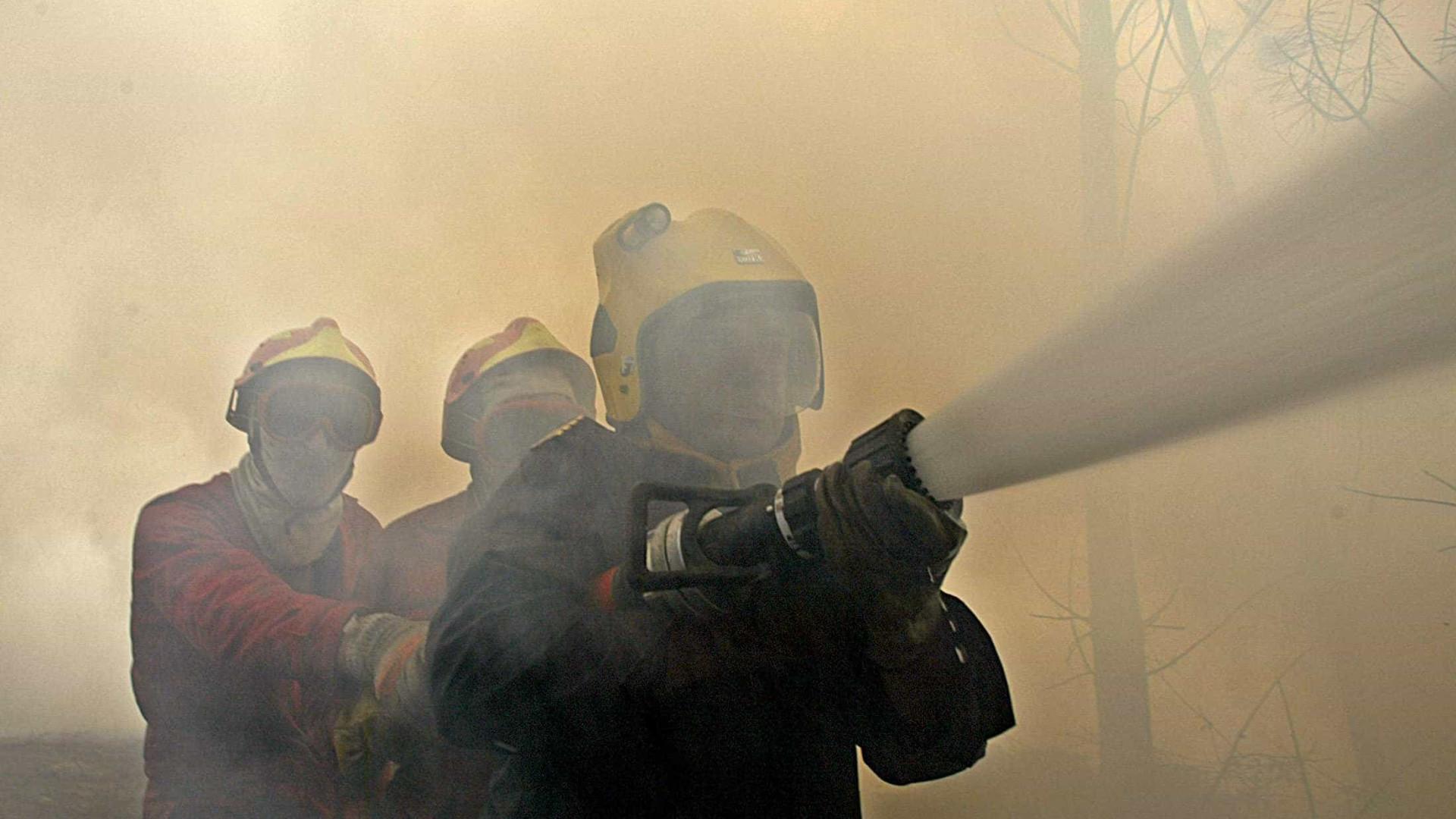 Portugal com 168 incêndios às 19h combatidos por 691 operacionais