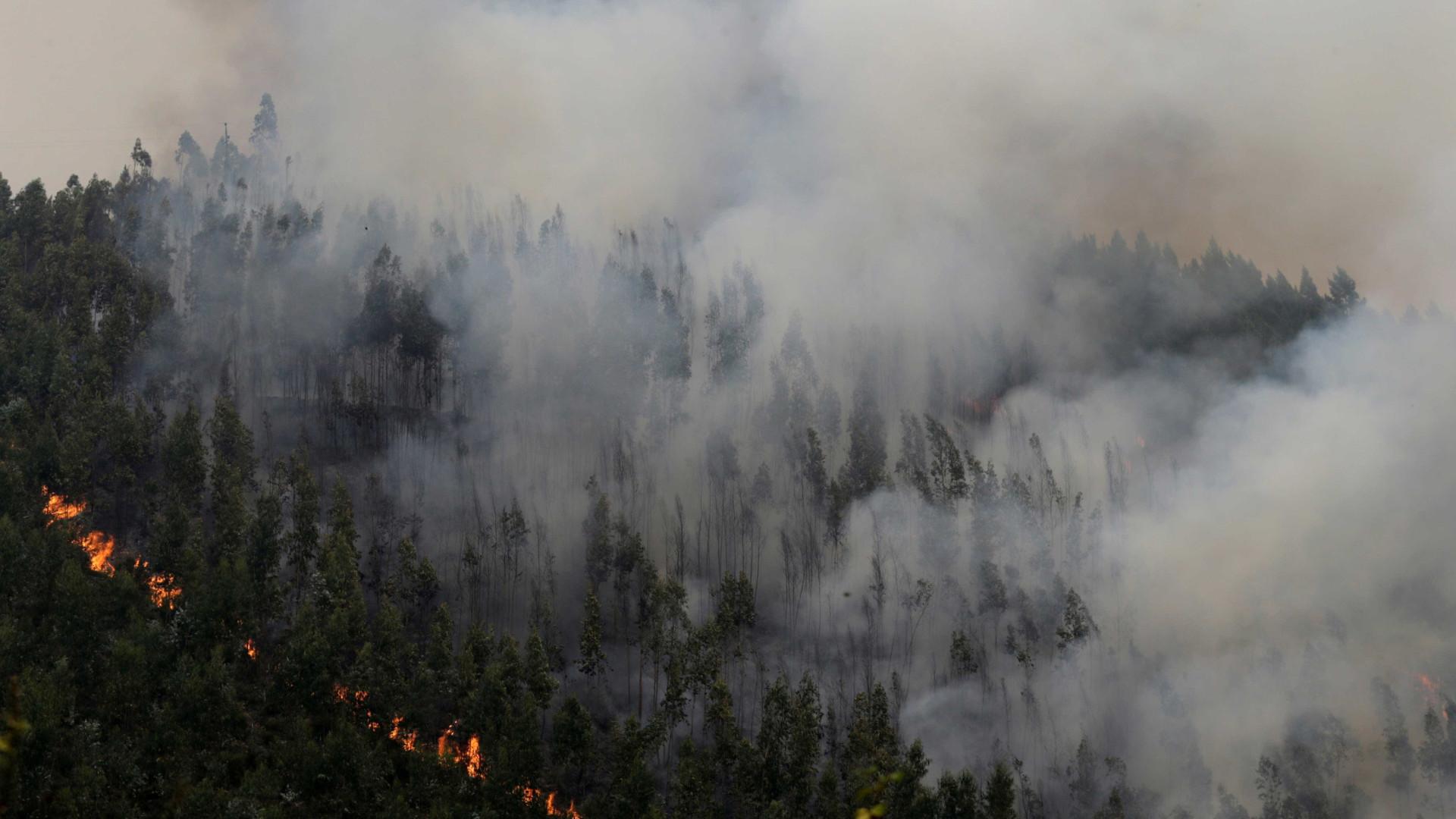 """Incêndios: """"Foi Deus que me salvou a vida, os animais e a casa"""""""