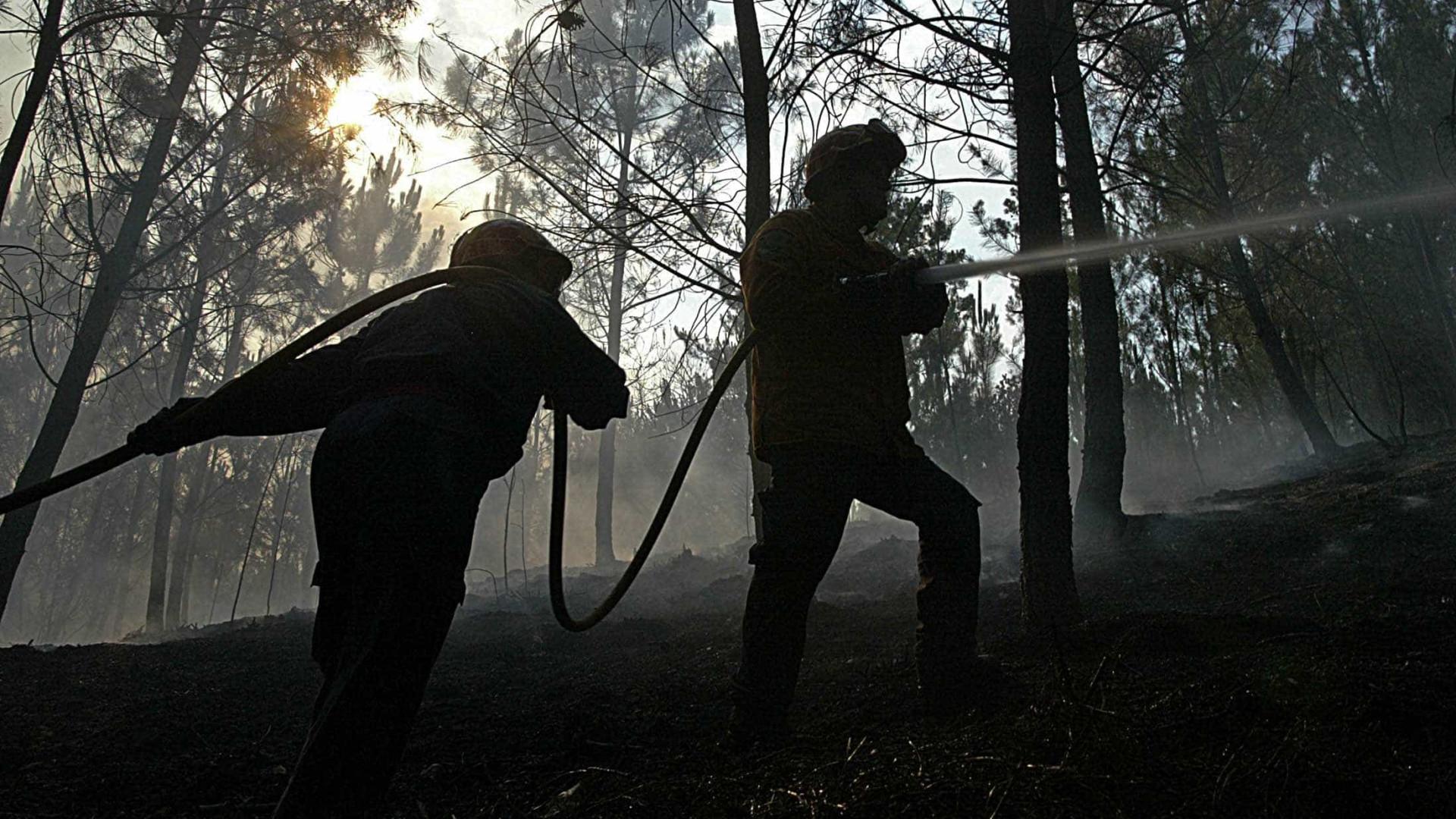 Mais de 2 mil operacionais, apoiados por 620 veículos, combatem fogos