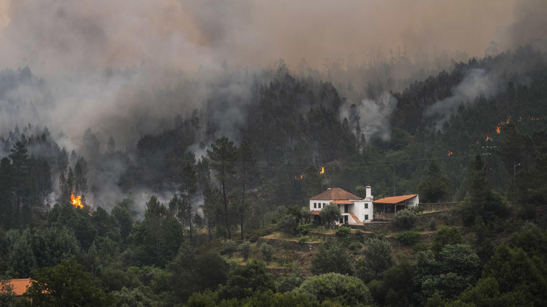 Pedrógão Grande: Fogo avança para distritos de Coimbra e Castelo Branco