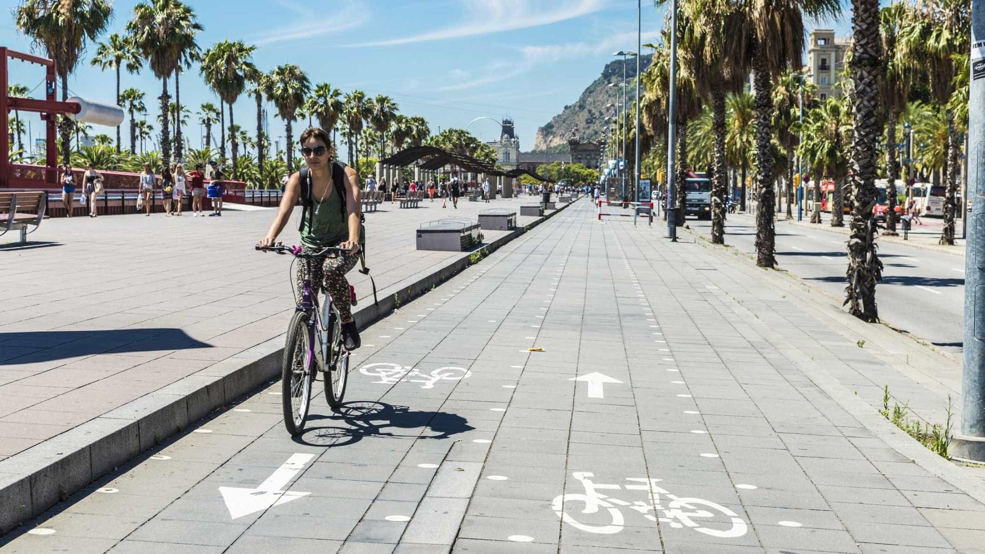 Andar de bicicleta em segurança? Eis os conselhos a seguir