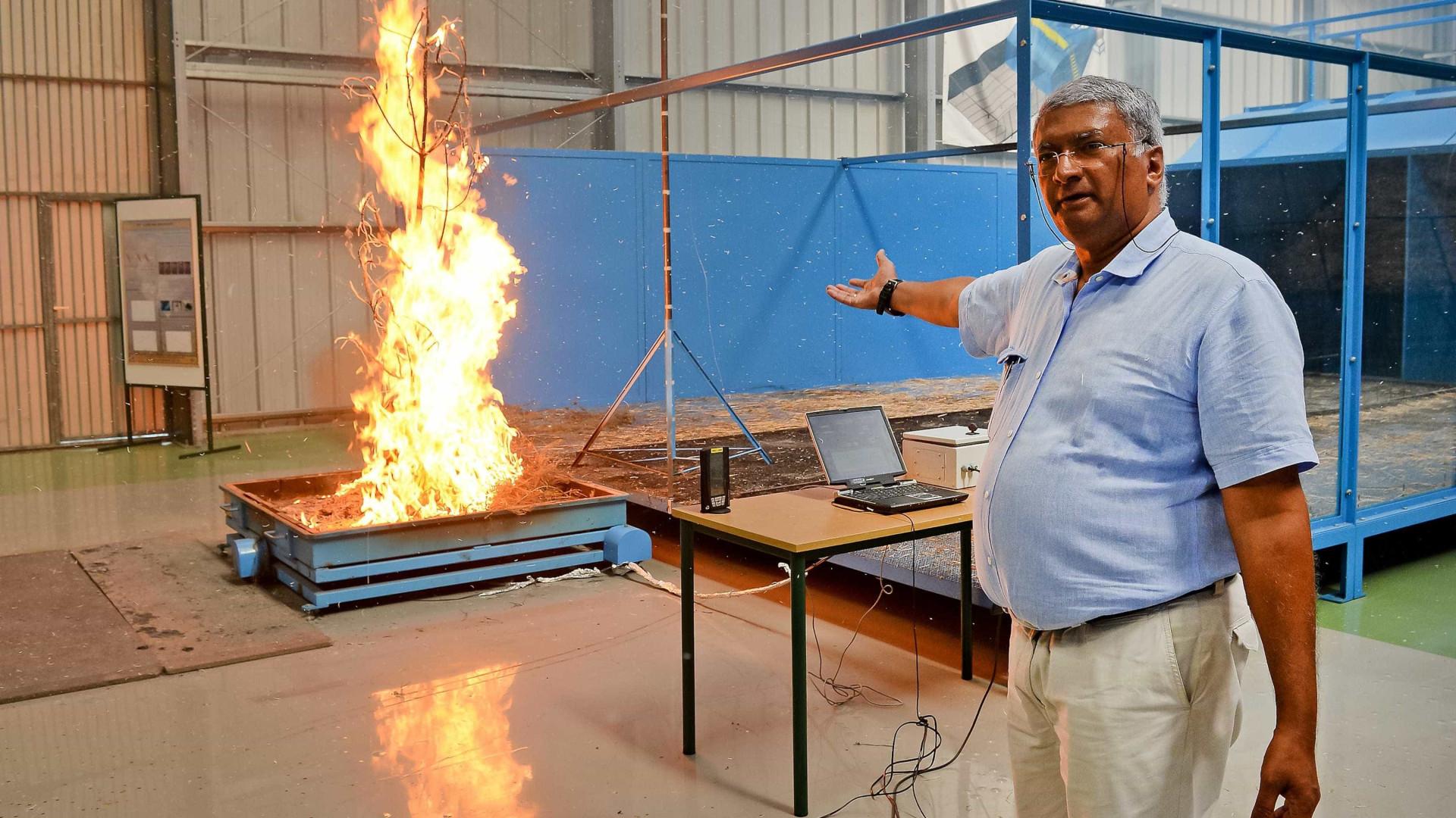 """Xavier Viegas diz que países nórdicos """"devem preparar-se para os fogos"""""""