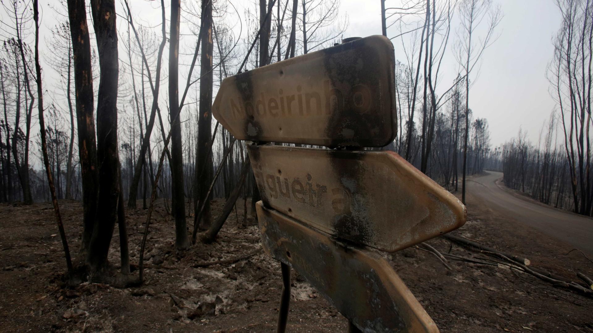 Incêndios: Abertos 40 estágios em municípios afetados no ano passado