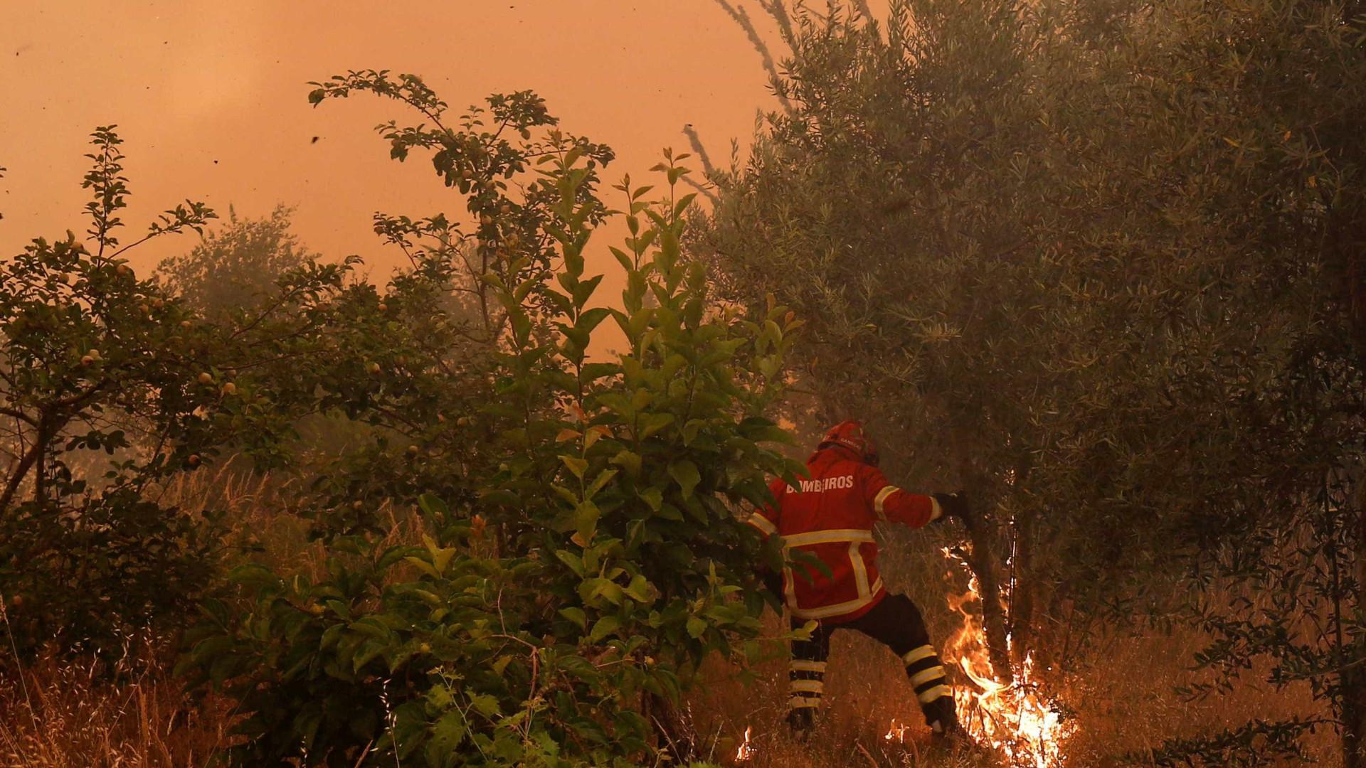 """Combate às chamas em Oleiros """"está a ser favorável"""""""