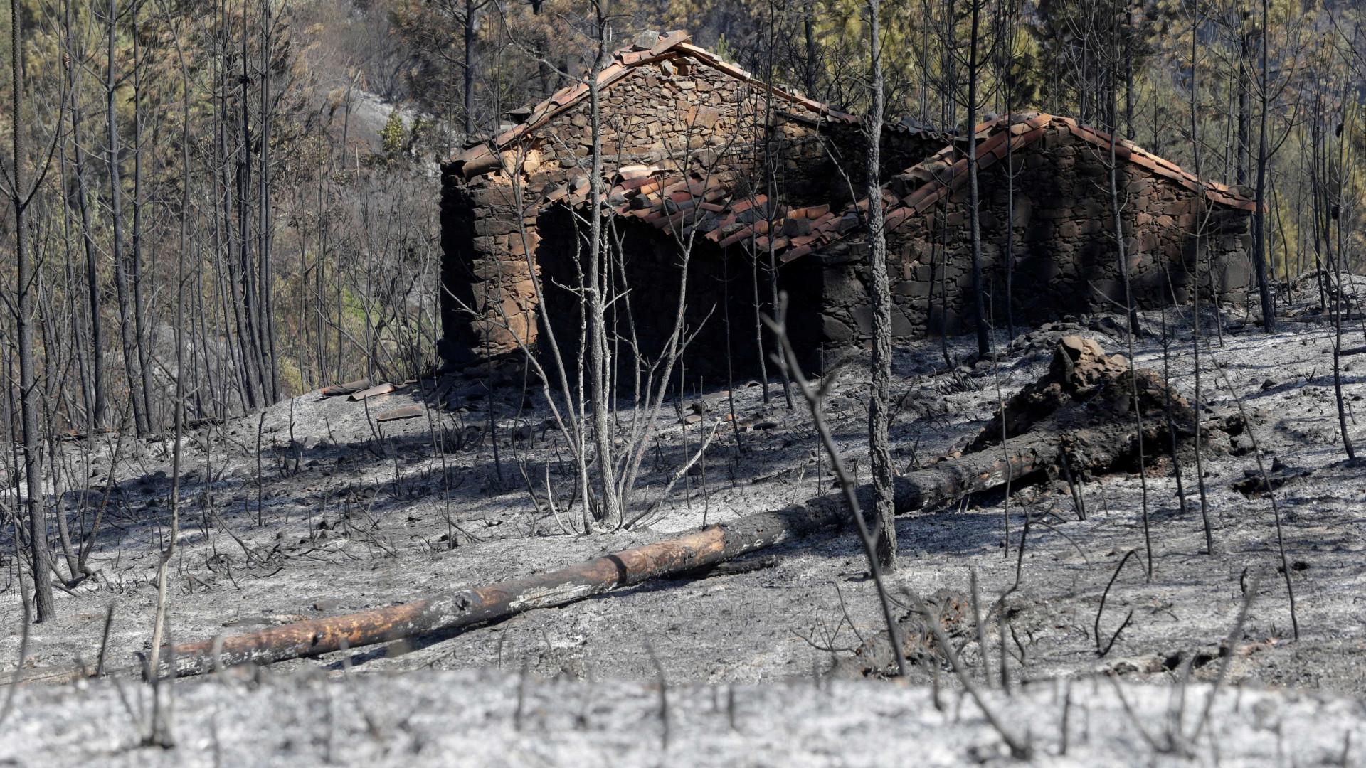 Pedrógão: Associação de Vítimas cria espaço de conhecimento sobre fogos