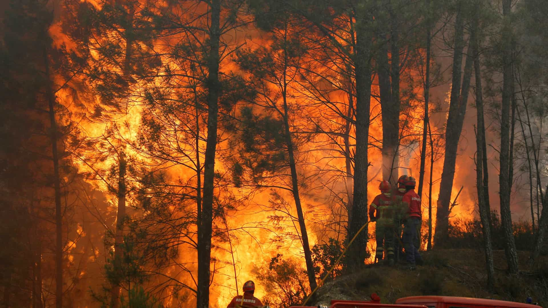 Pedrógão Grande: Risco de incêndio pode vir a ser maior na zona afetada