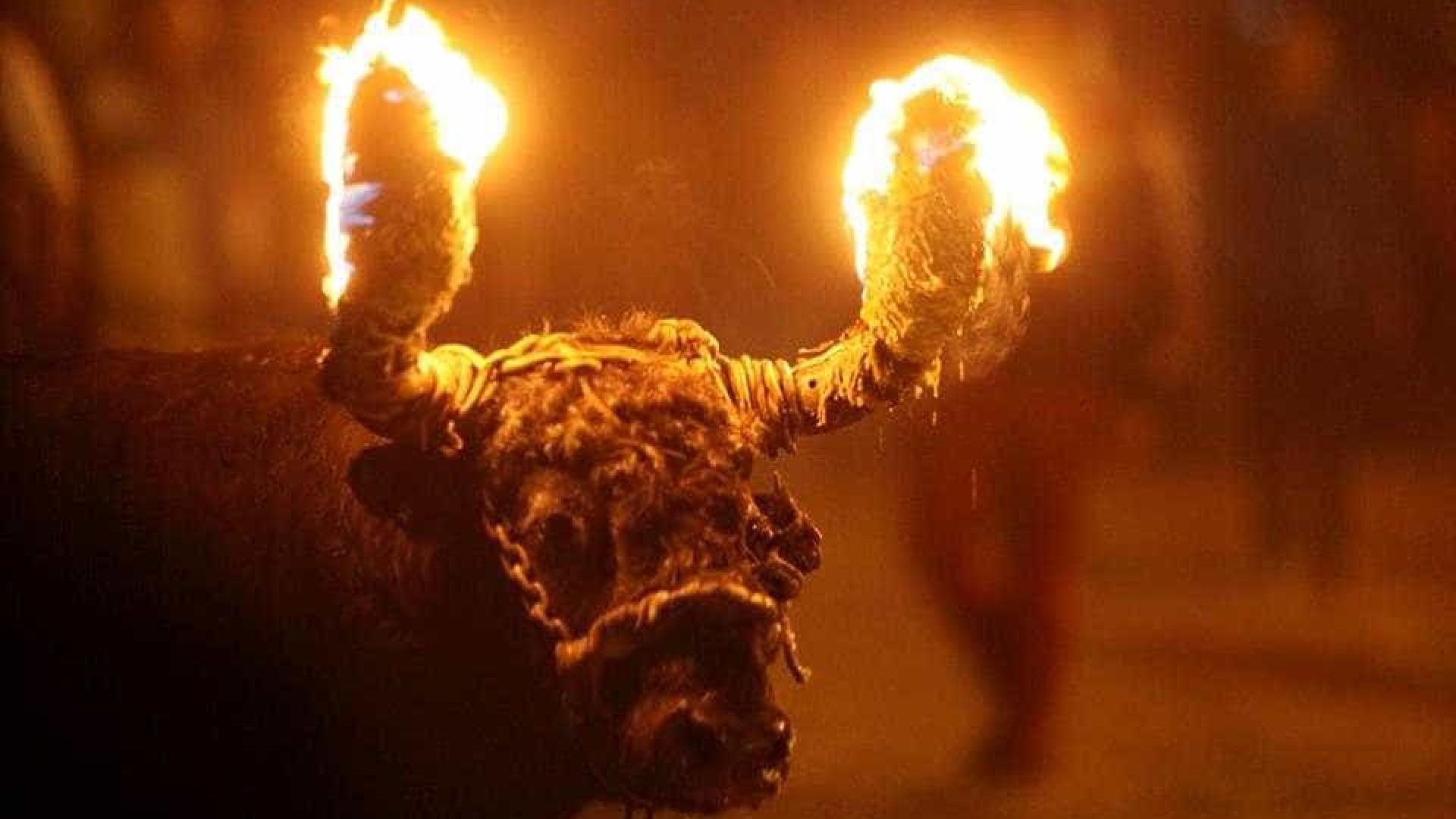 Cancelado evento com touros de fogo em Benavente