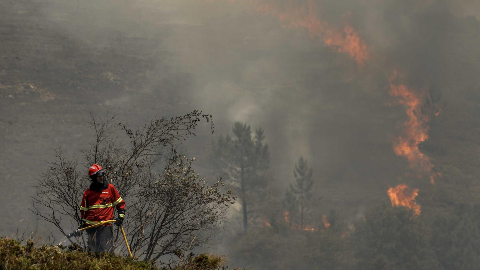 Incêndio em mato na Escarpa das Fontaínhas, no Porto