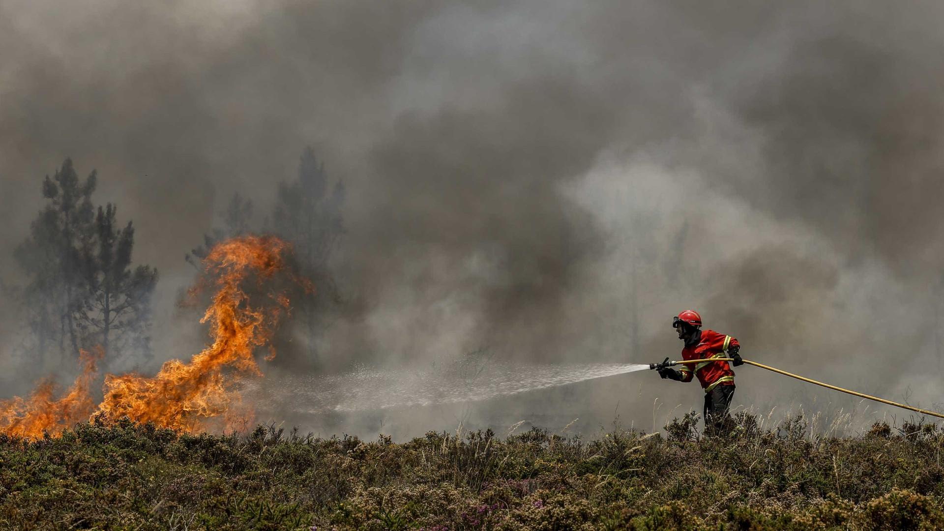 Fogo de Pombal destruiu 332 hectares de floresta