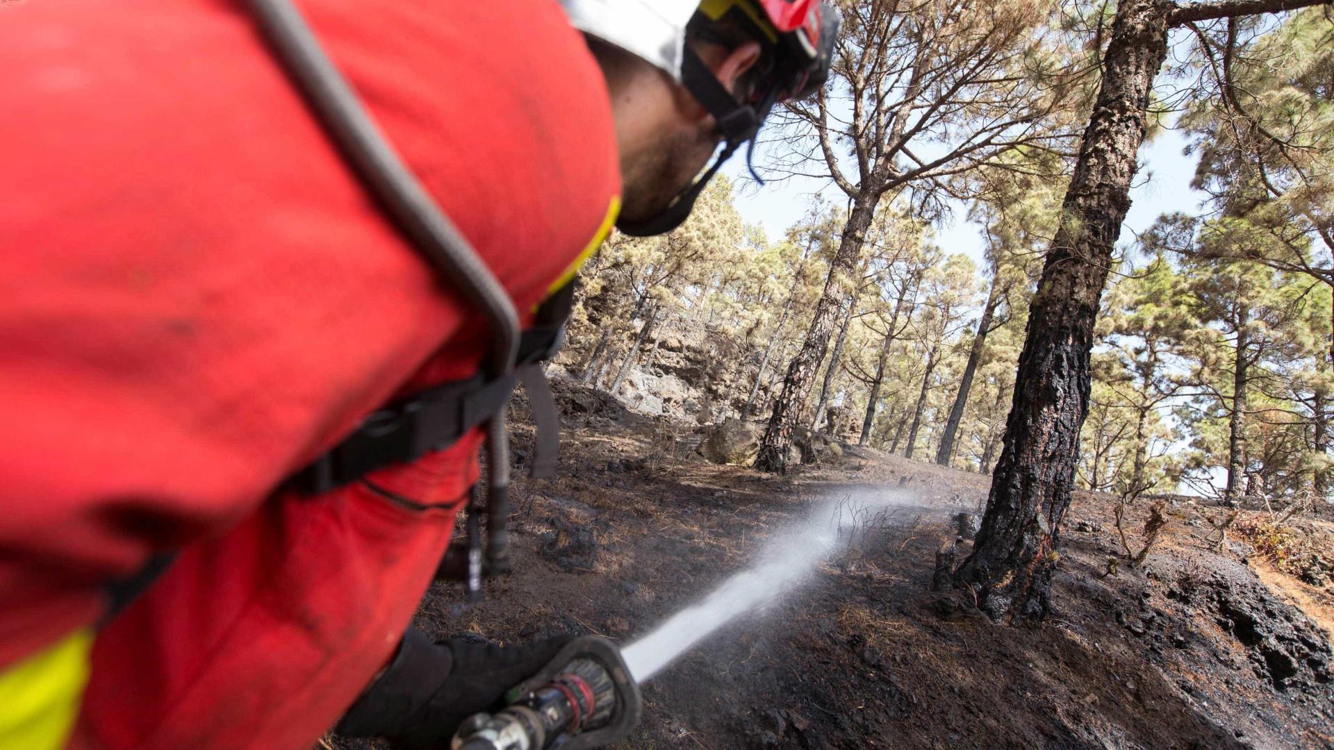 Incêndios: Fogo no concelho da Guarda combatido por 150 operacionais