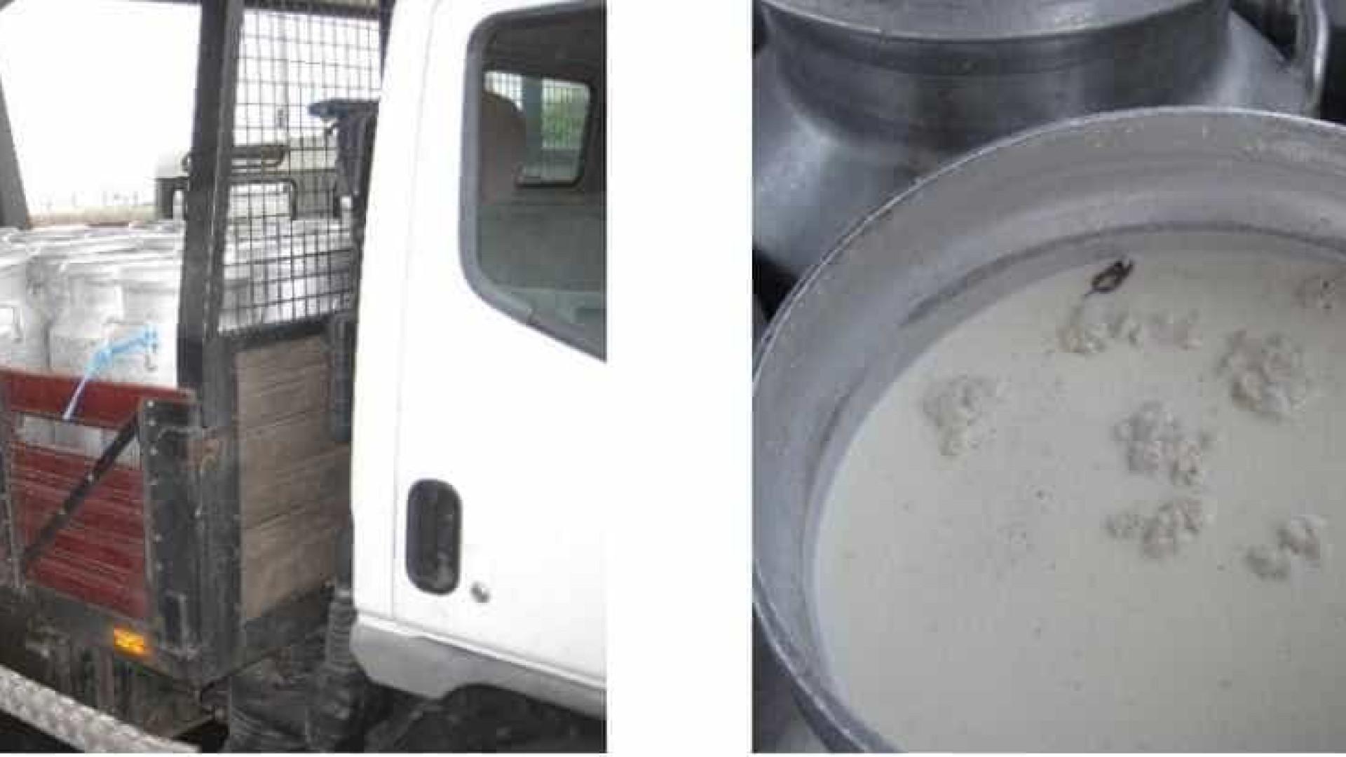 Resultado de imagem para ASAE fiscaliza explorações pecuárias que usavam água oxigenada no leite