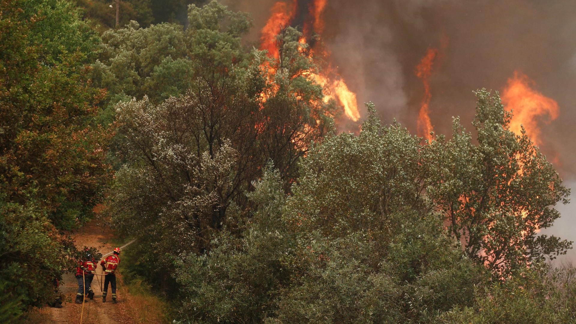 Fogo em Gavião obriga a evacuação de aldeia e de praia fluvial