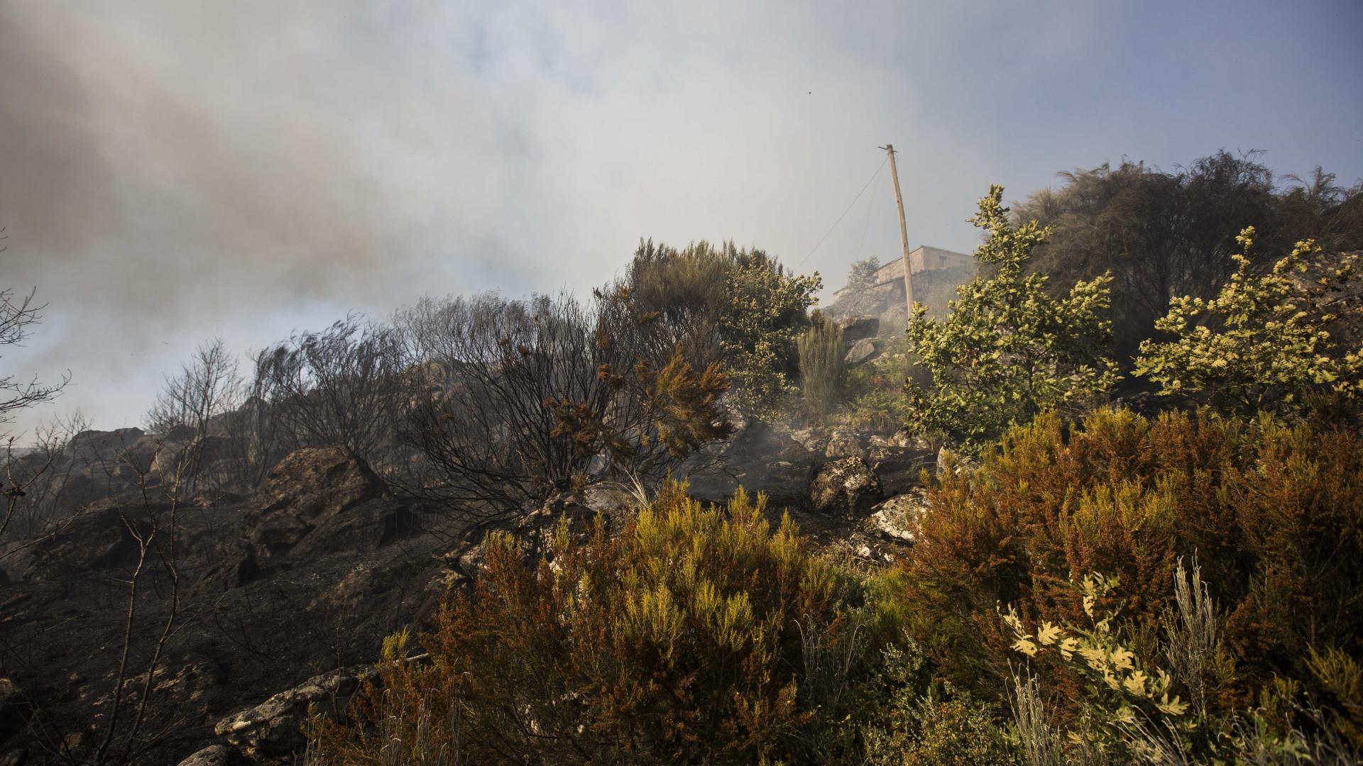 Incêndios: Ativado Plano de Emergência Municipal em Mangualde