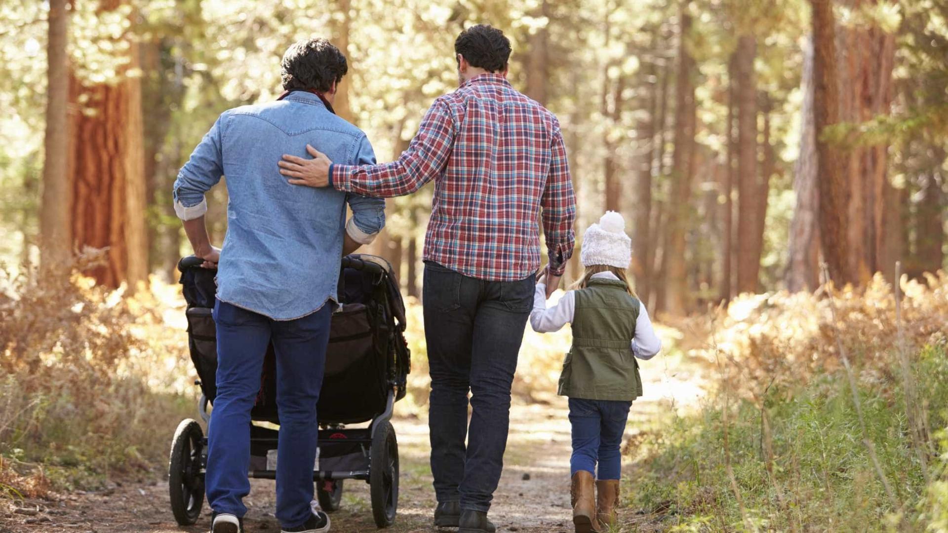 Risultati immagini per adozioni gay firenze