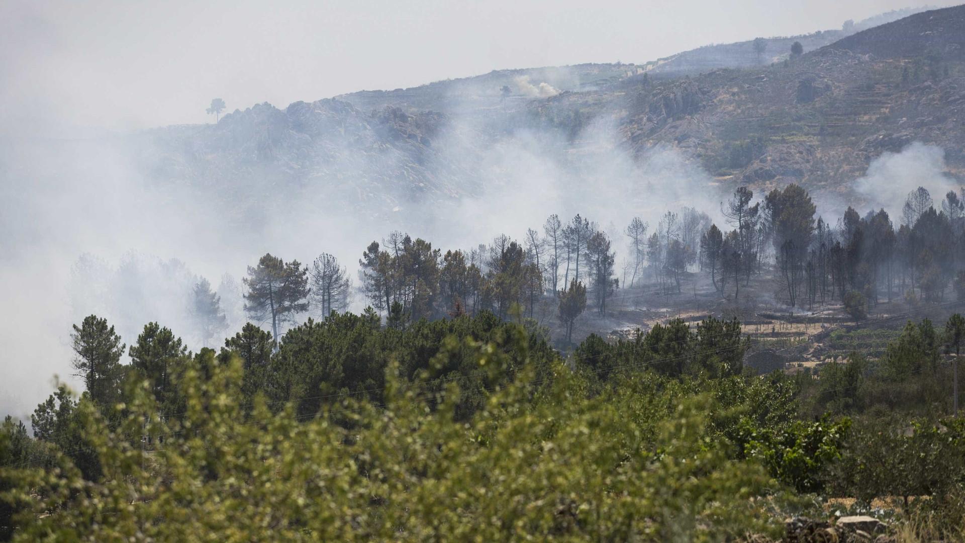 Fogo em Alijó ainda com frentes ativas. Um bombeiro ferido