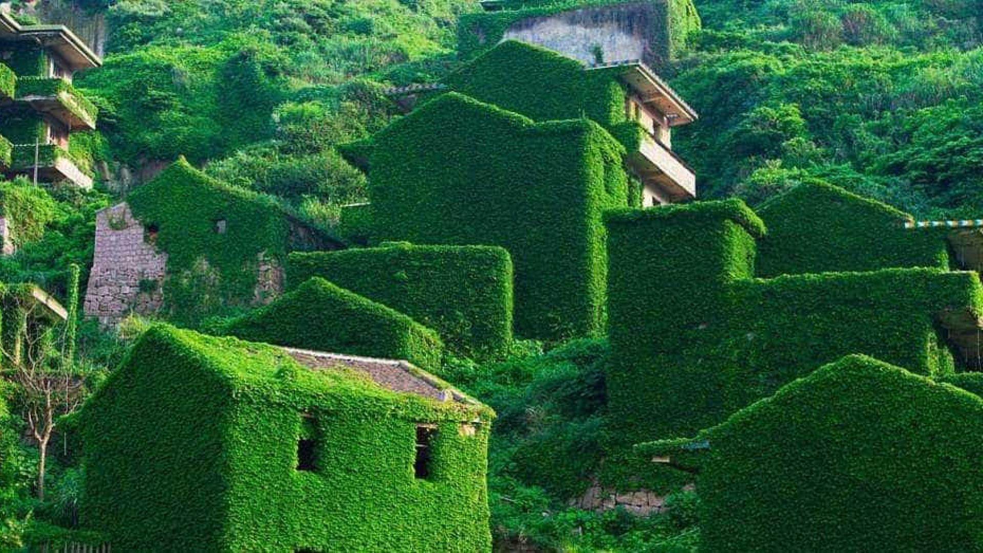 Conheça os lugares abandonados que foram 'invadidos' pela natureza