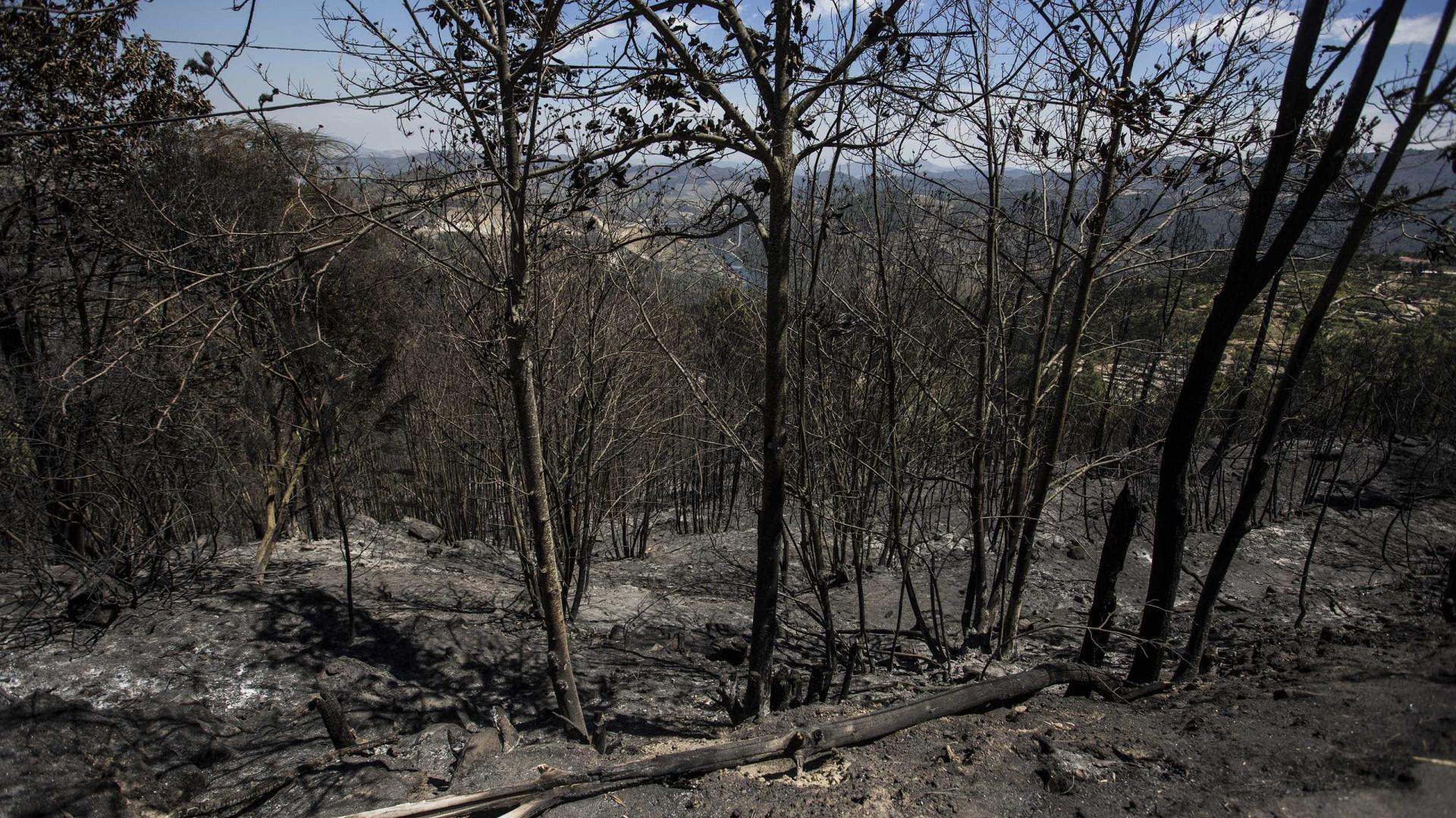 Fogo em Quiaios, Figueira da Foz, em fase de resolução às 17:45