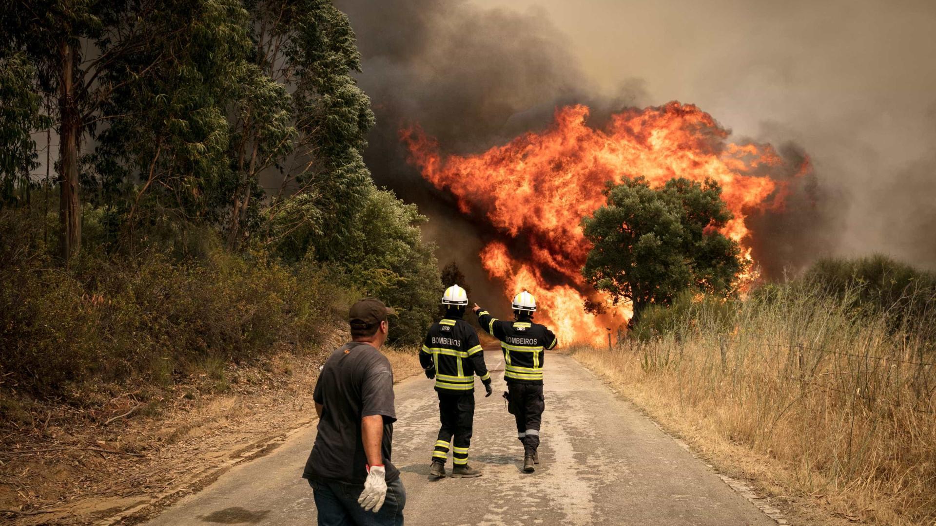Mação: Imagens de um concelho devastado pelo fogo
