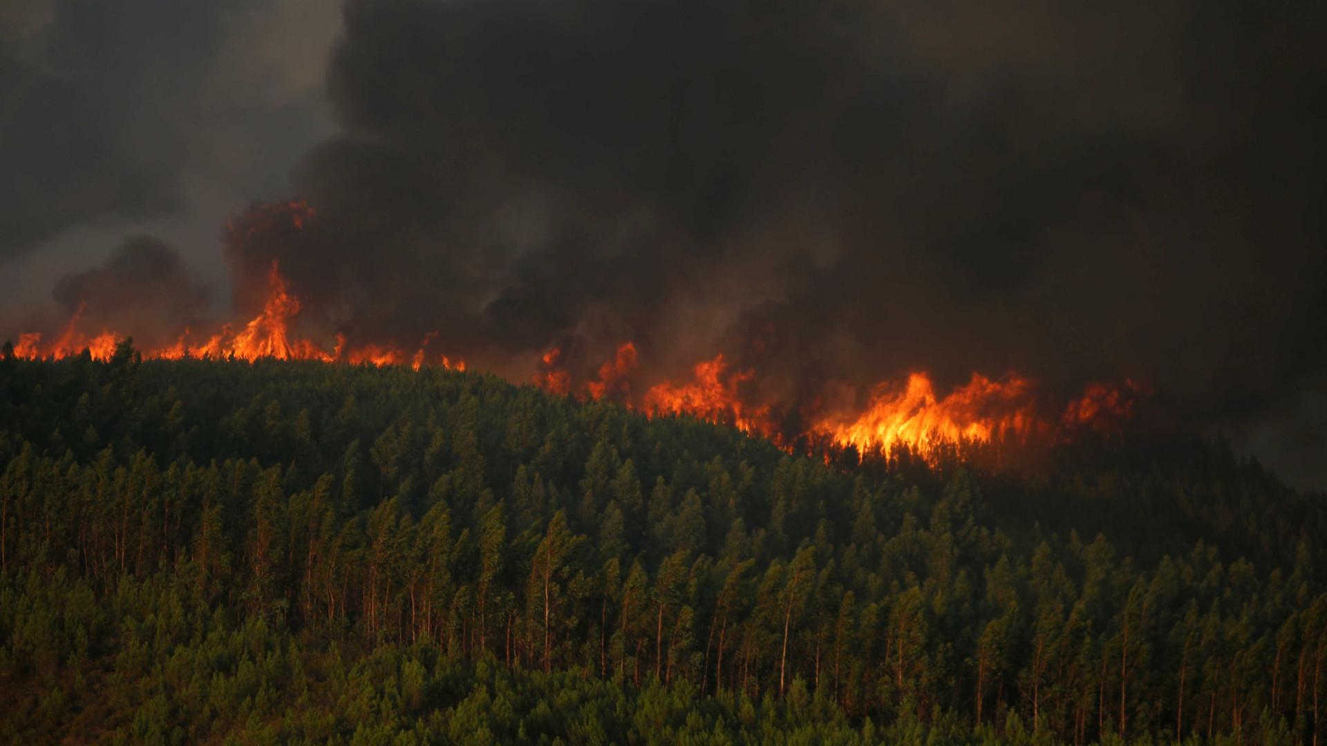 """Reforço de meios no fogo que destrói """"paisagem protegida"""" em Sesimbra"""