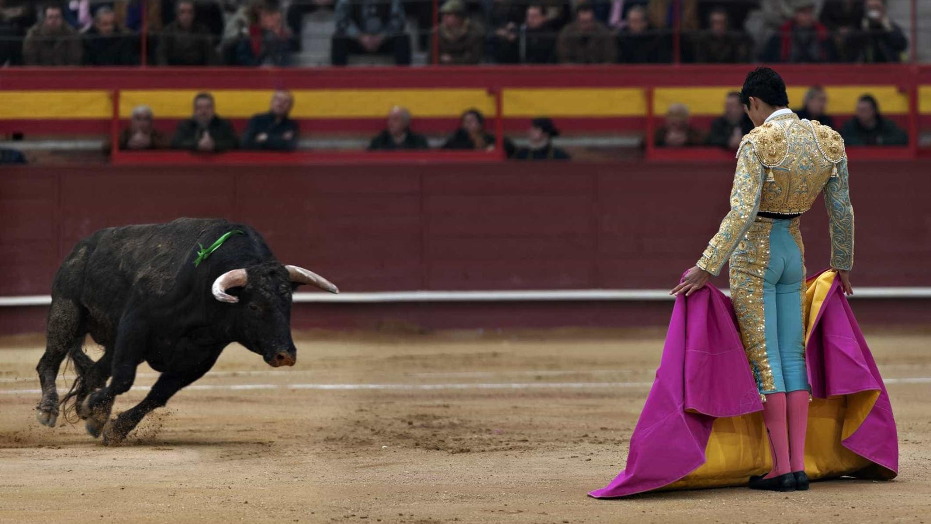 """Corrida de touros: """"Objetivo era manietar a liberdade de escolha do país"""""""