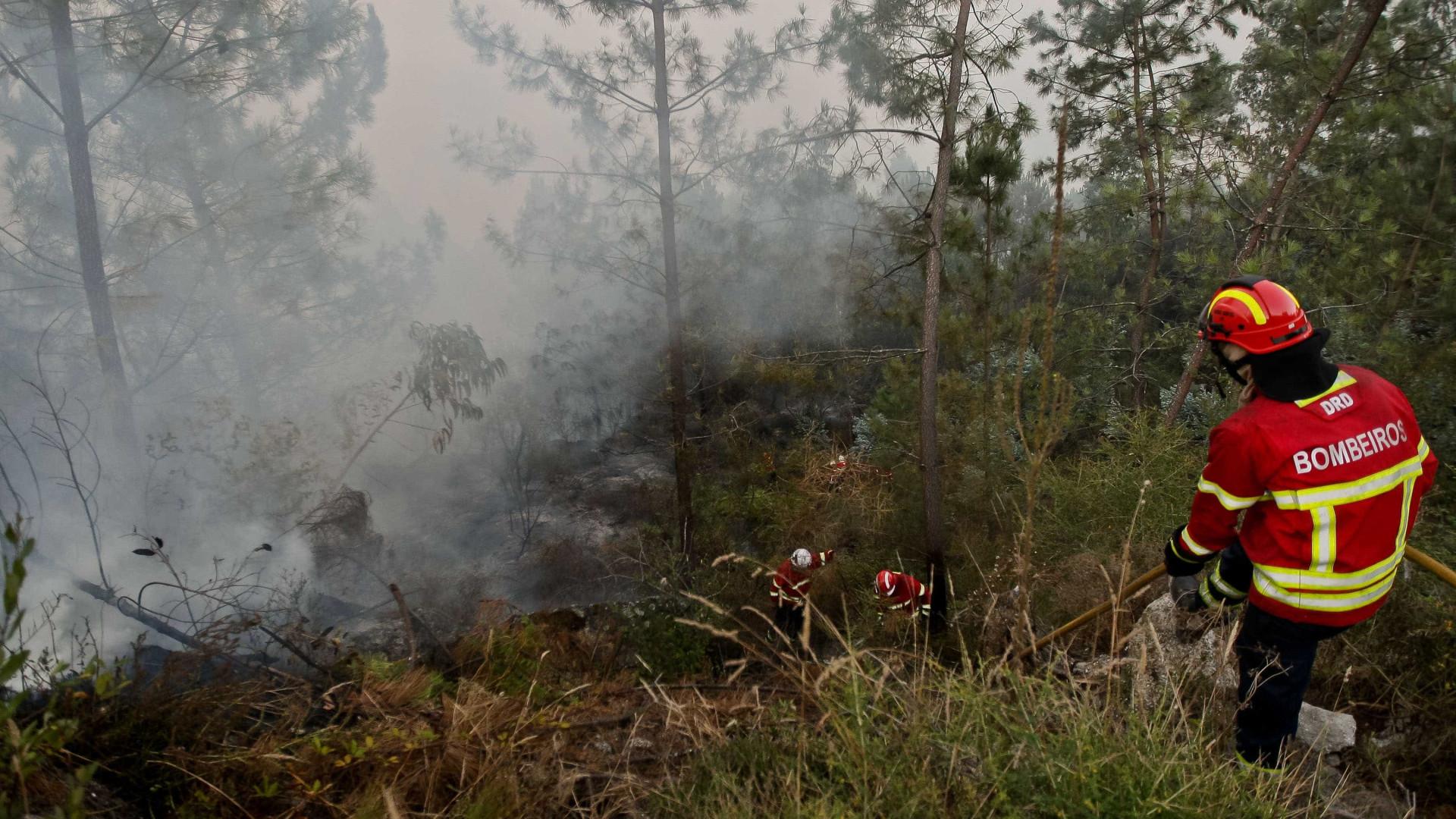 Mais uma incendiária detida, desta vez por fogo em Vila Pouca de Aguiar